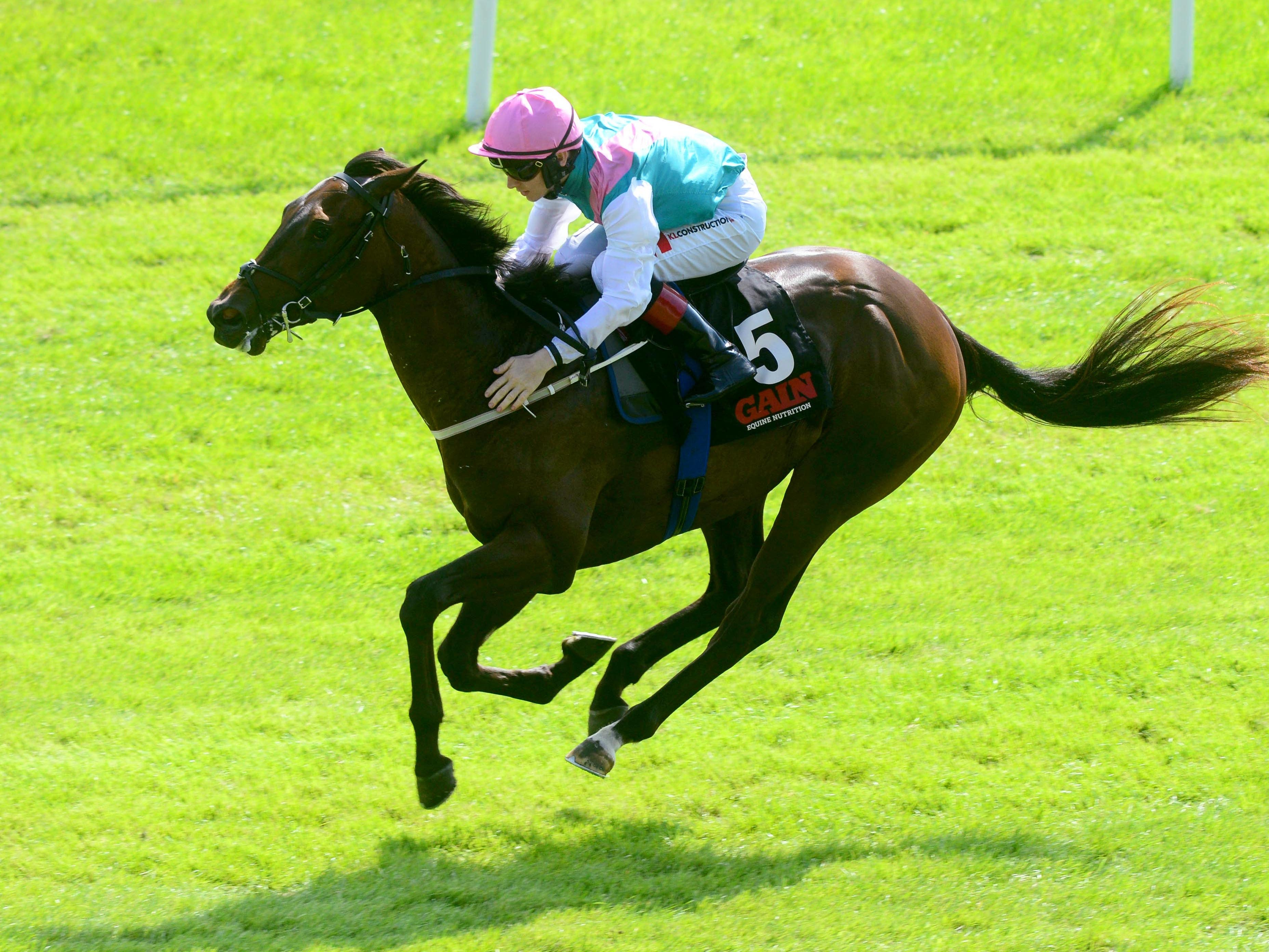 Siskin has the Middle Park Stakes in his sights (PA)