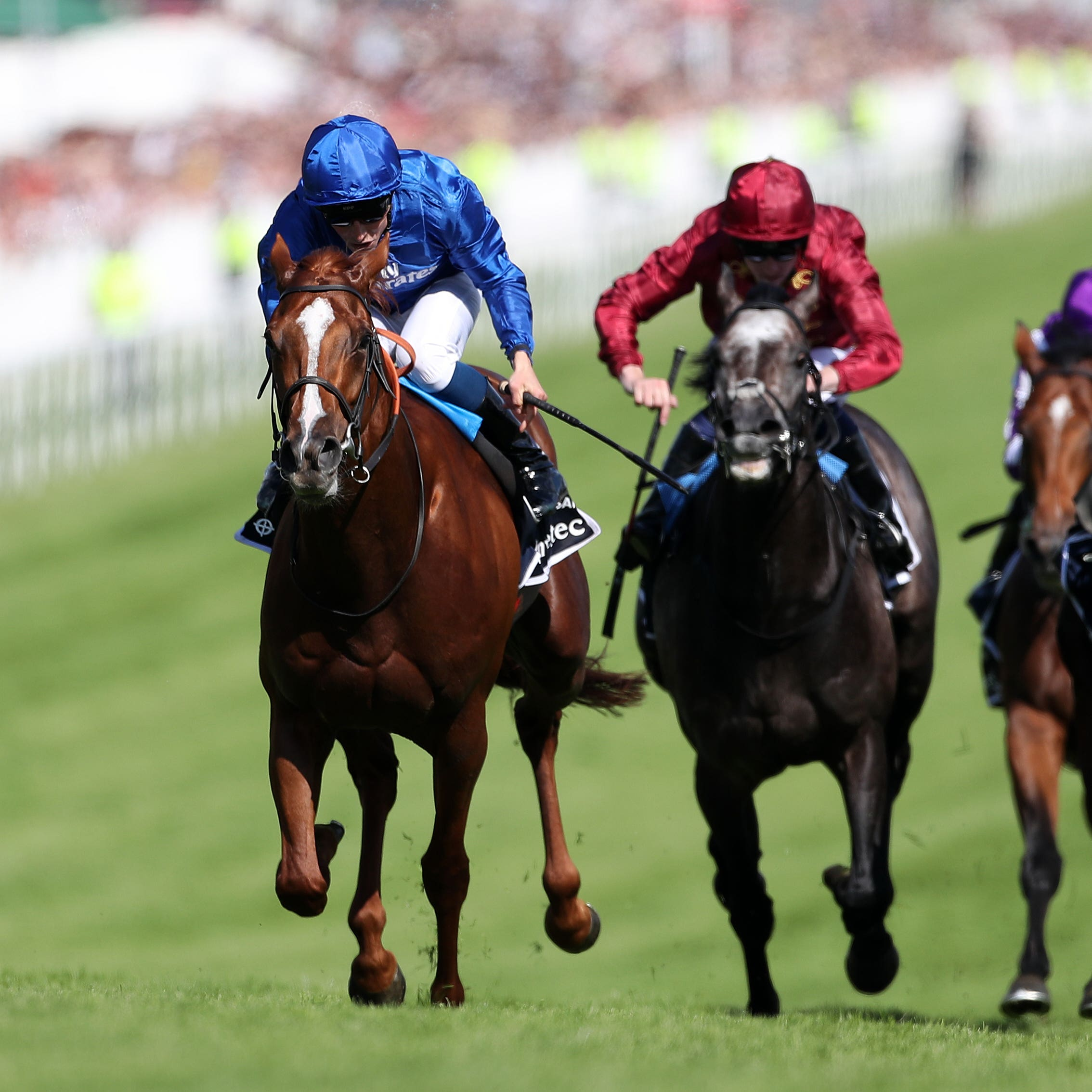 Masar's Ascot target has still not been decided