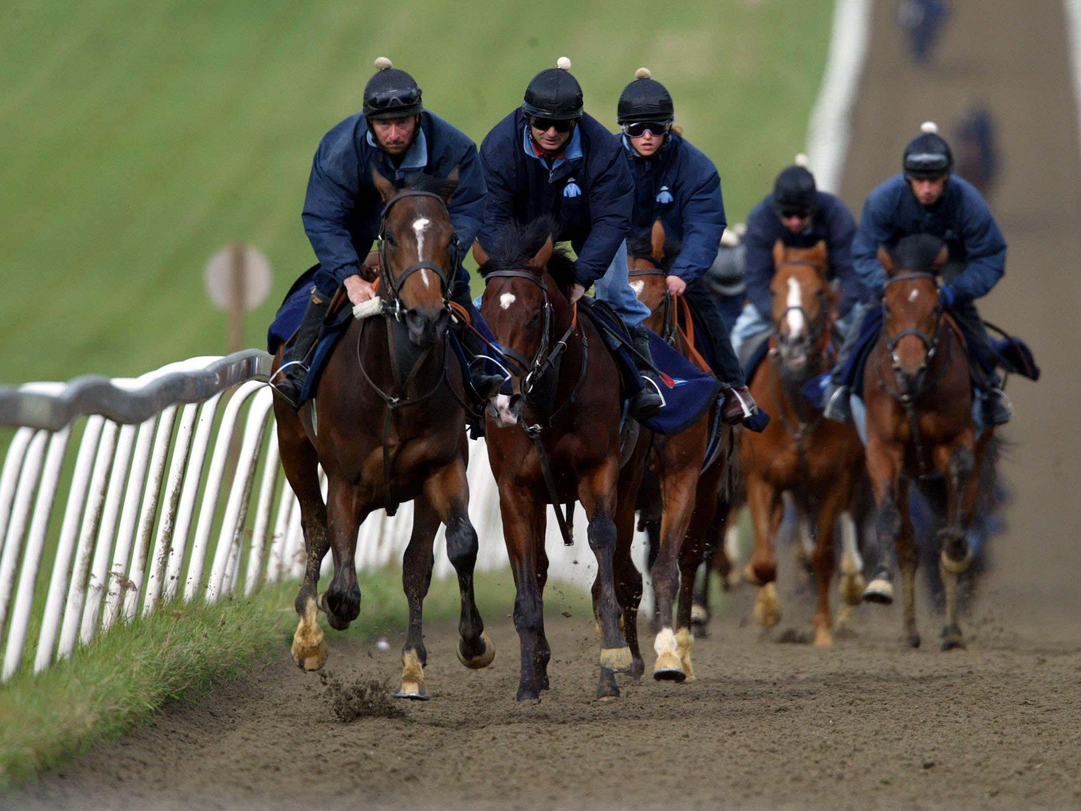 The National Trainers Federation has advised that racehorse gallops should continue, adhering to strict Government advice during the coronavirus outbreak (Andrew Parsons/PA)