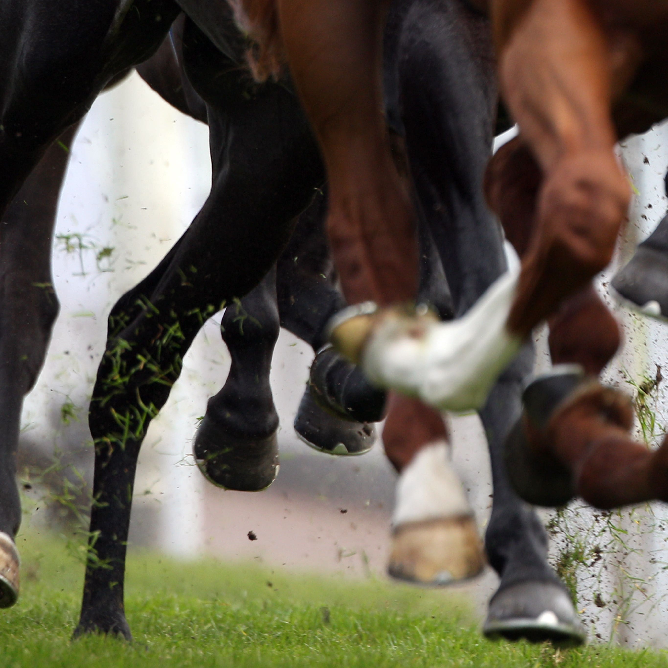 Monday's scheduled meeting at Windsor has been abandoned