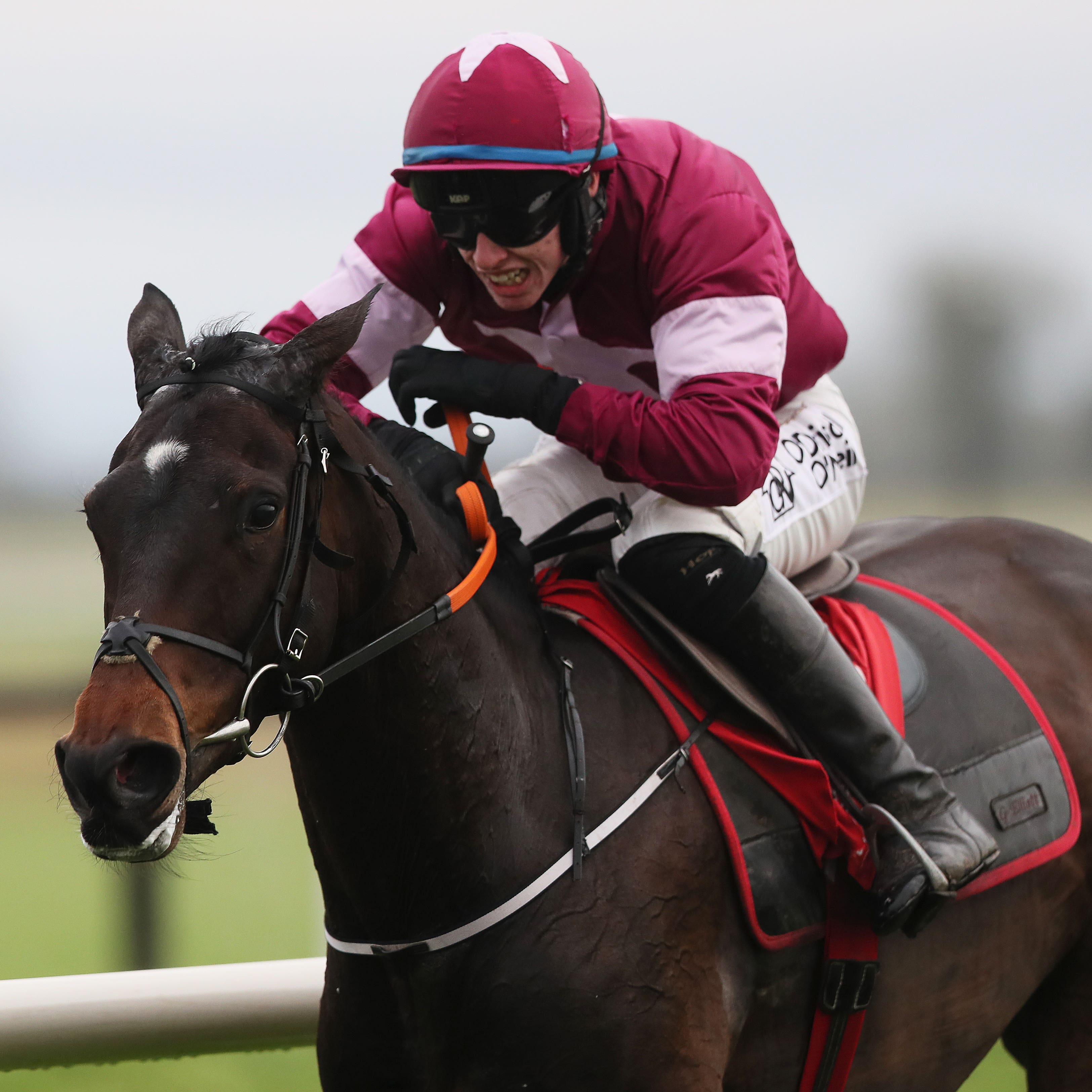 Apple's Jade will bid for a third win in the Hatton's Grace Hurdle at Fairyhouse