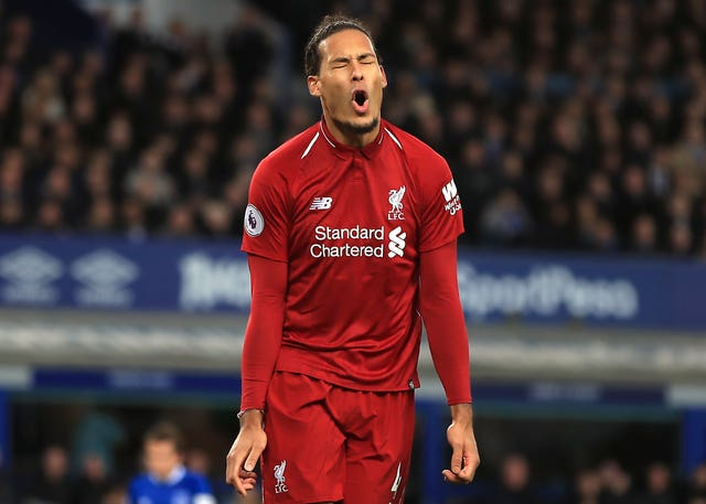 Virgil Van Dijk could prove crucial to Liverpool's chances