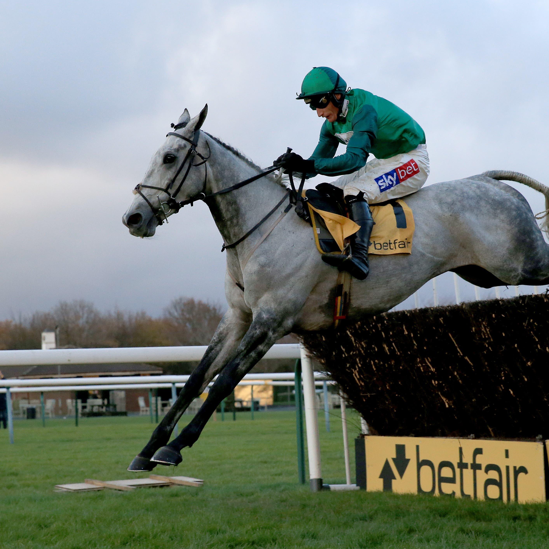 Bristol De Mai was an easy winner of the Betfair Chase last year