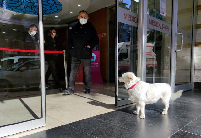 Devoted dog Boncuk looks for his owner, Cemal Senturk, at the entrance of a medical care facility in the Black Sea city of Trabzon, Turkey
