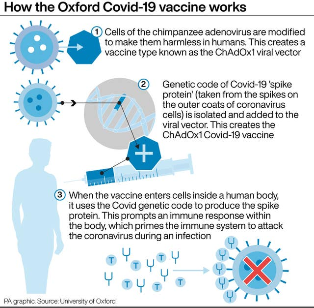 How the Oxford Covid-19 vaccine works