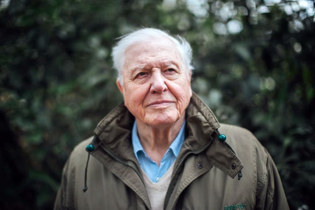 Sir David Attenborough comments