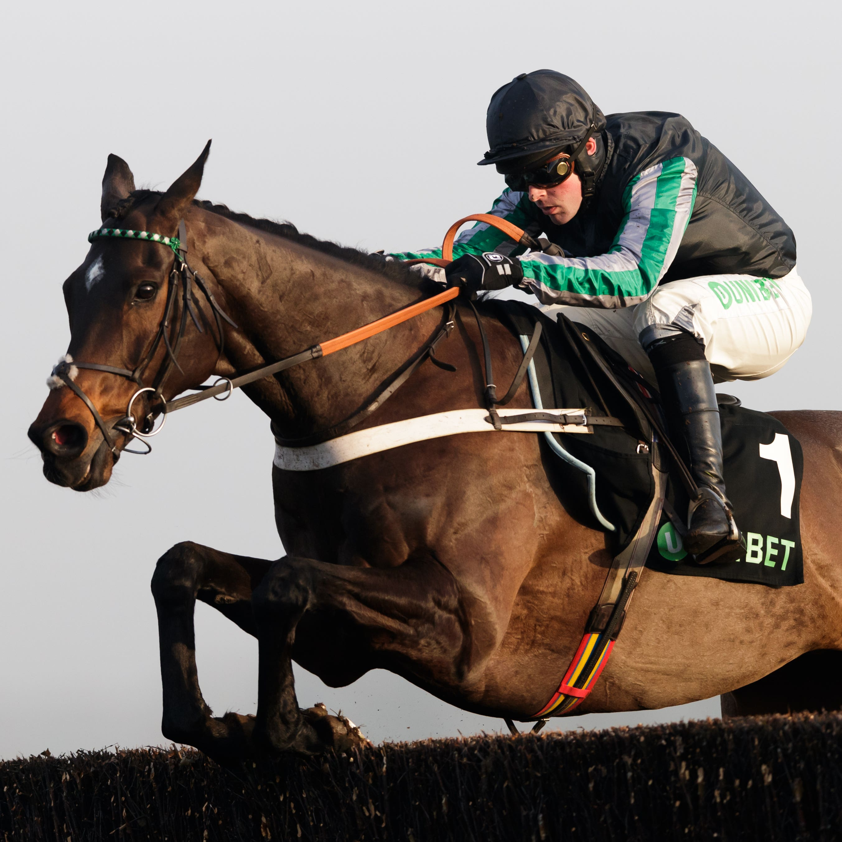 Altior notched up his 18th successive win in the Champion Chase