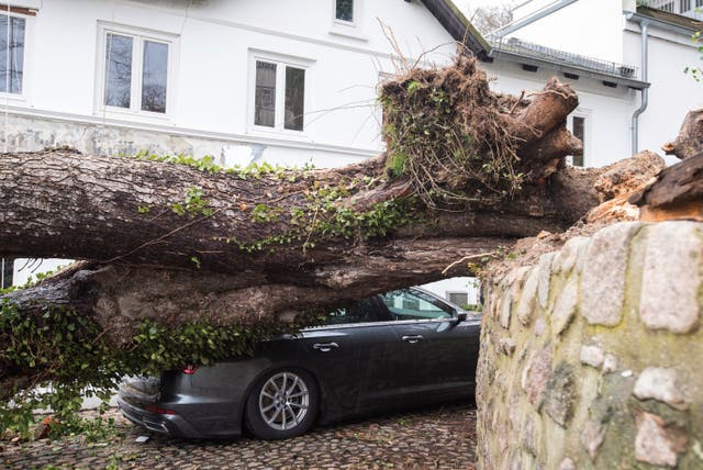 A tree lies on a car in Hamburg