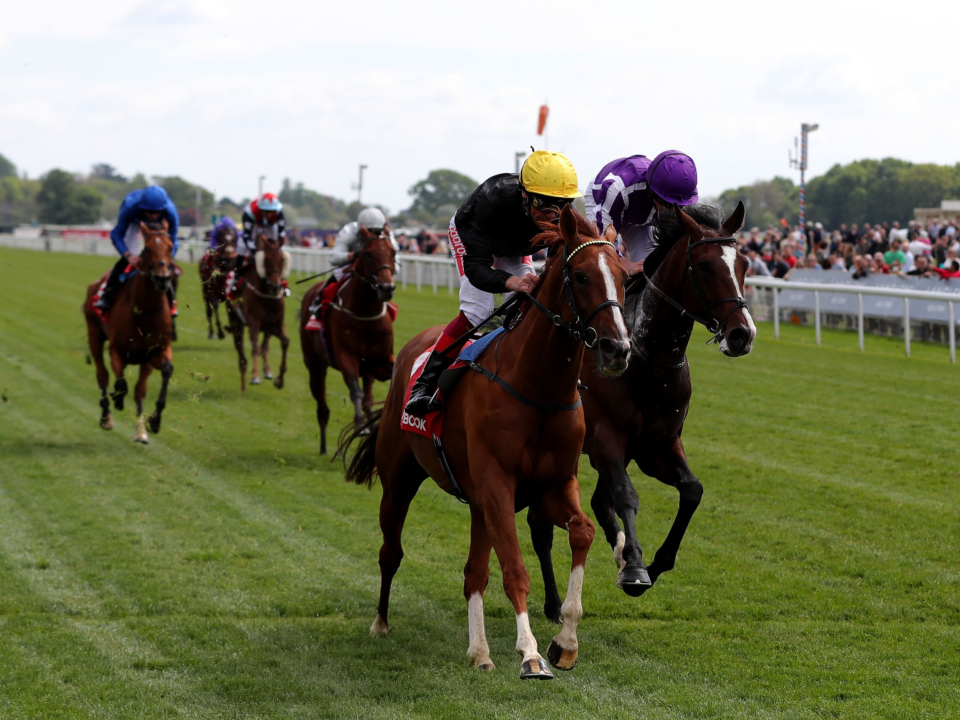 Southern France (right), here chasing home Stradivarius at York, has been supplemented for the Irish St. Leger at the Curragh (Richard Sellers/PA)