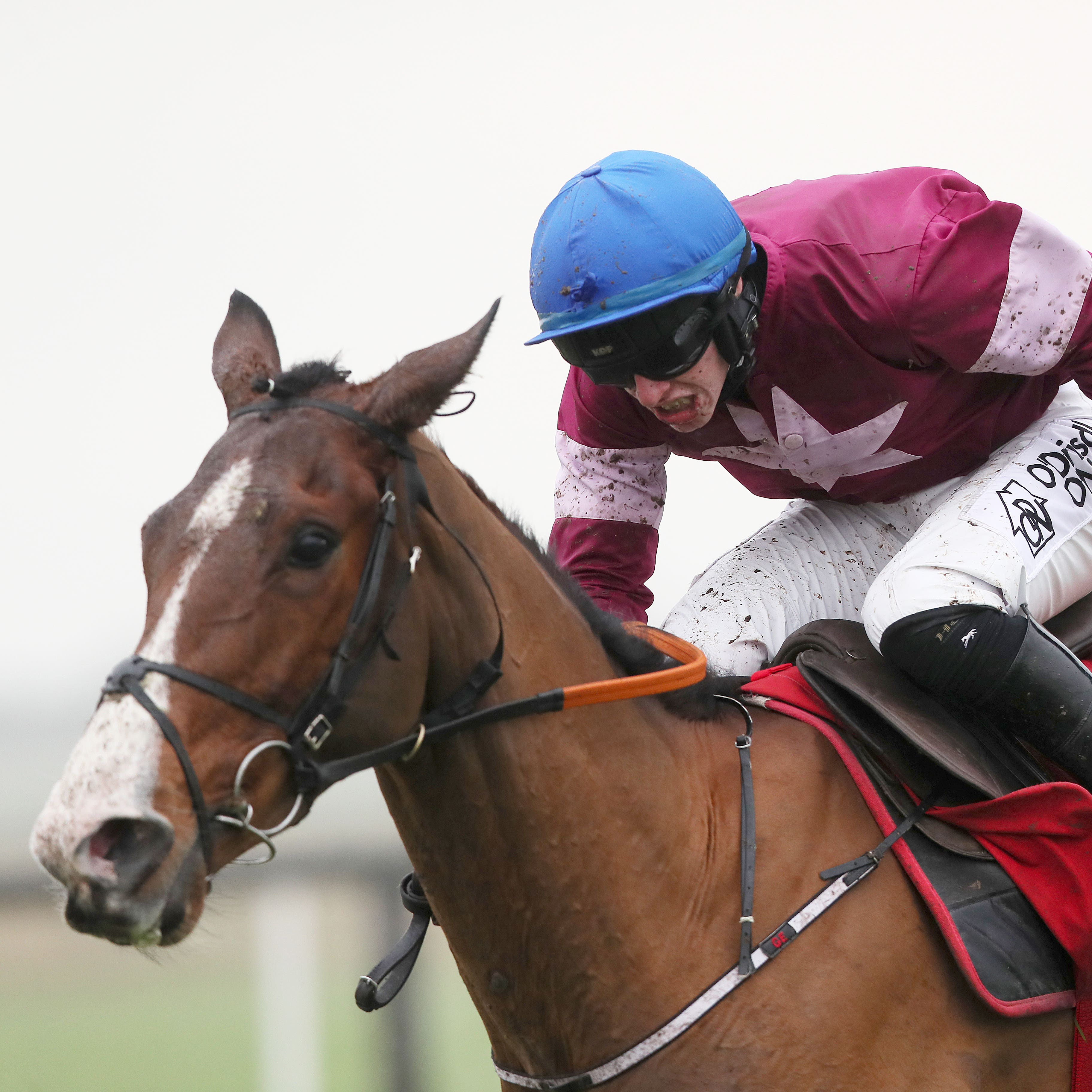 Mengli Khan is one of two runners for Gordon Elliott in the Ryanair Gold Cup