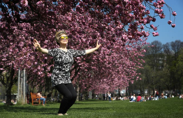 Sunny Yant, from Morningside, practices her Tai-chi underneath the cherry blossom in The Meadows, Edinburgh