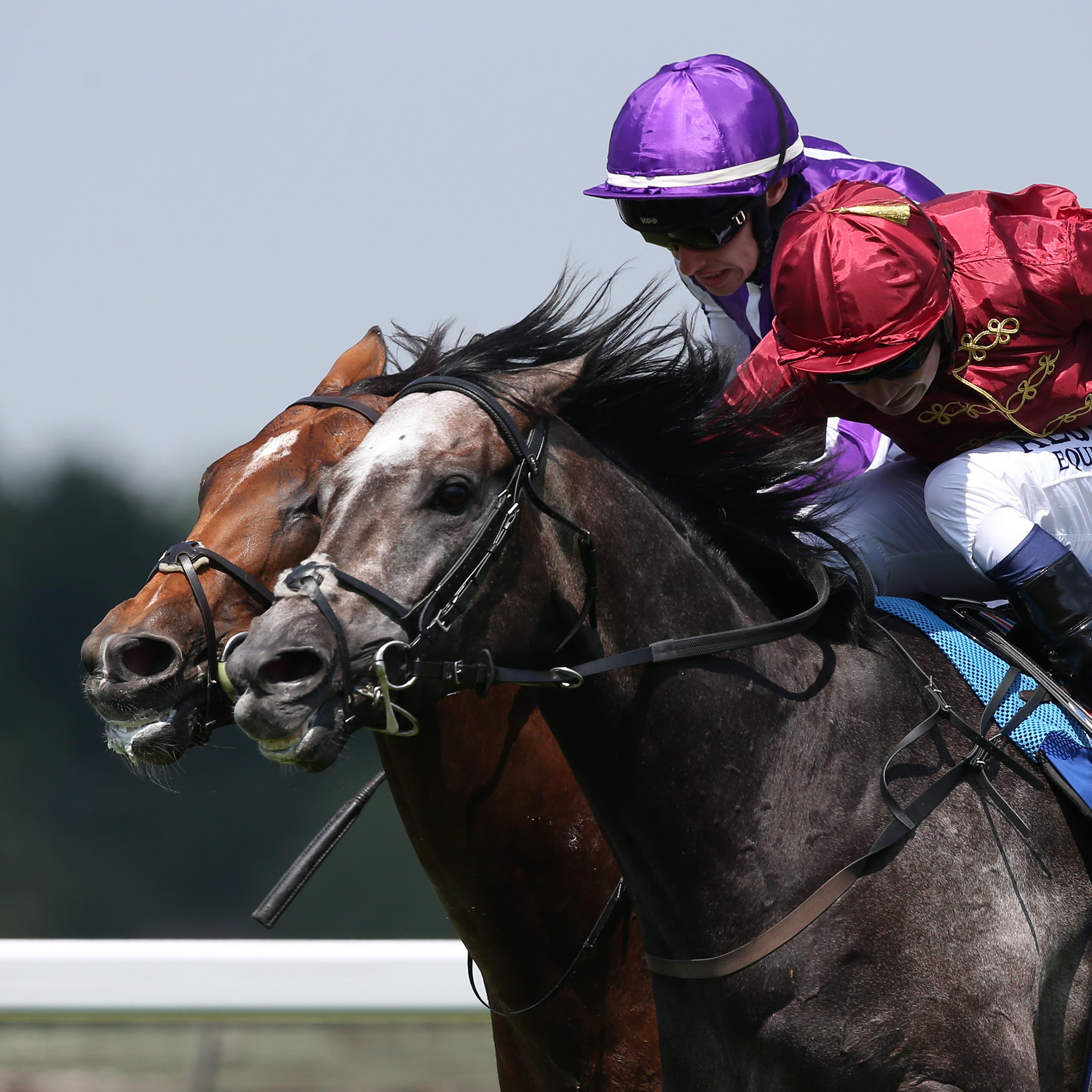 Roaring Lion beats Saxon Warrior in the Eclipse