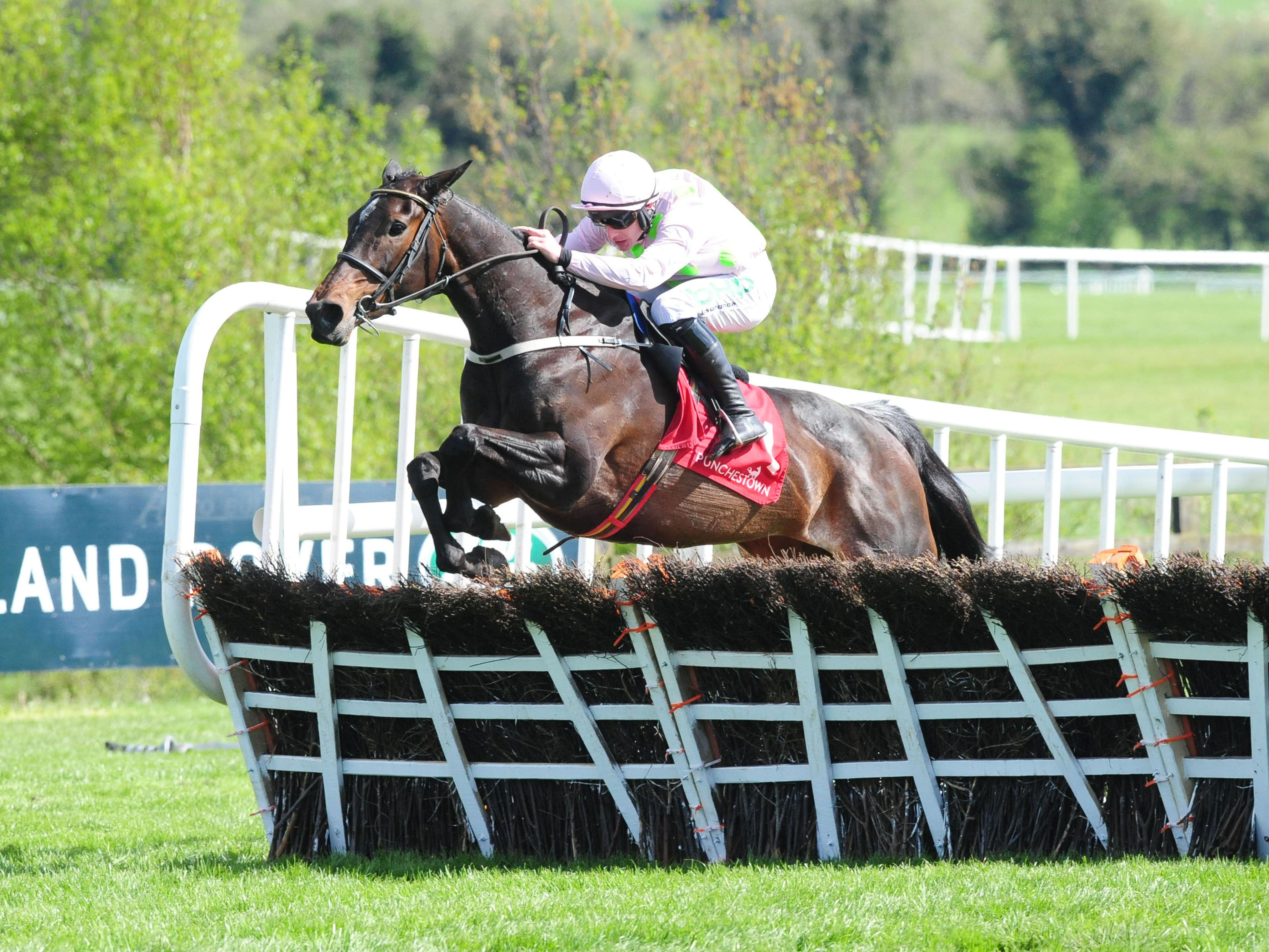 Benie Des Dieux is heading for the Mares' Hurdle at Cheltenham (PA Wire)