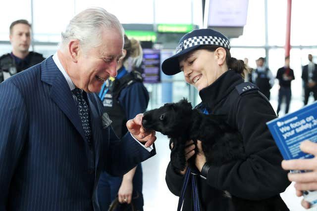 The Prince of Wales meets a Cocker Spaniel named Ned, a trainee explosives search dog, during a visit to Heathrow (Chris Jackson/PA)