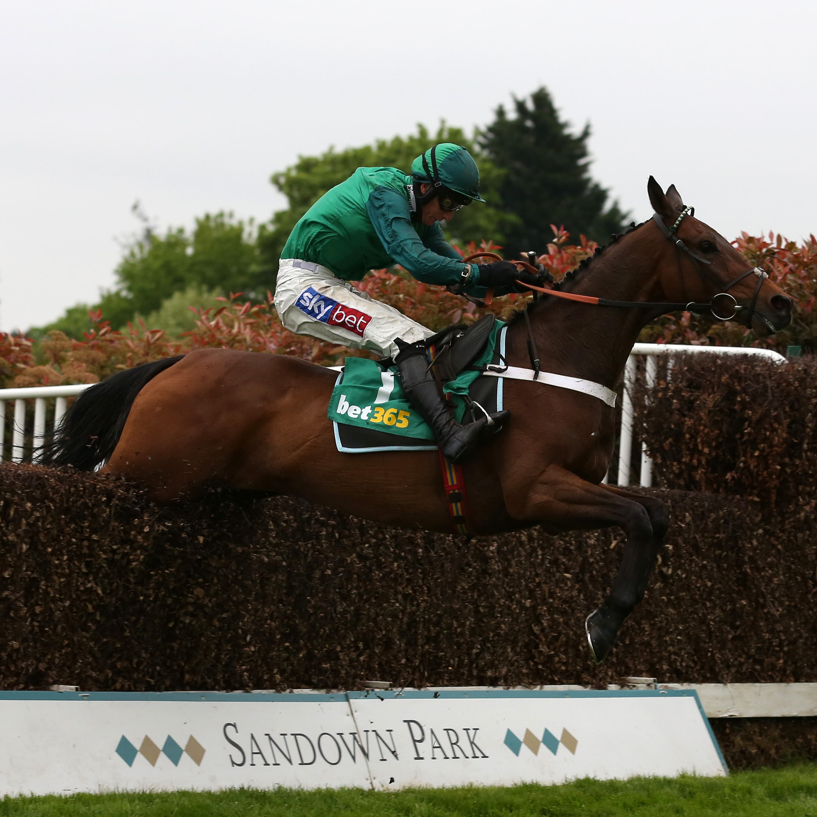 Top Notch could turn into a possible King George contender