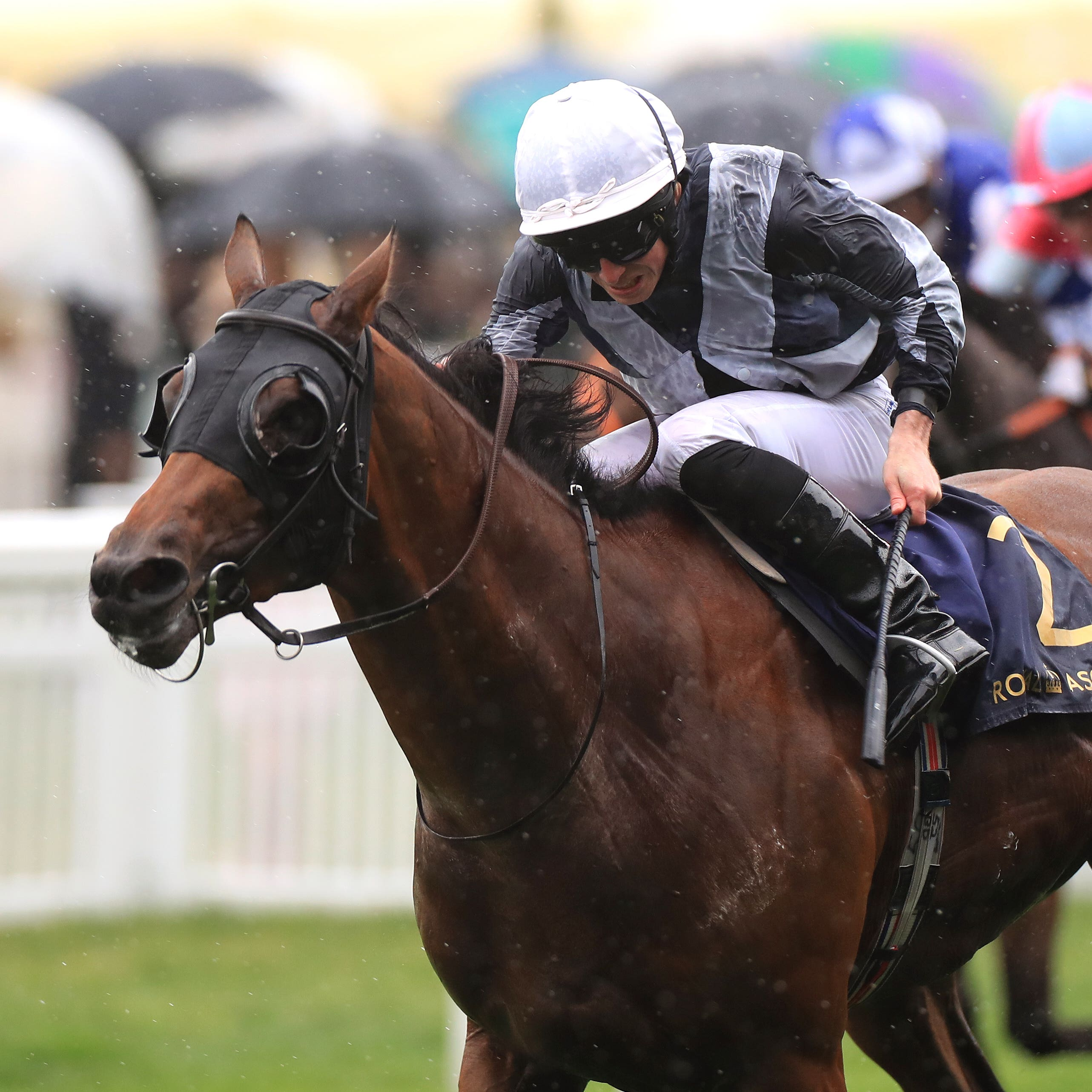Circus Maximus wins the St James's Palace Stakes