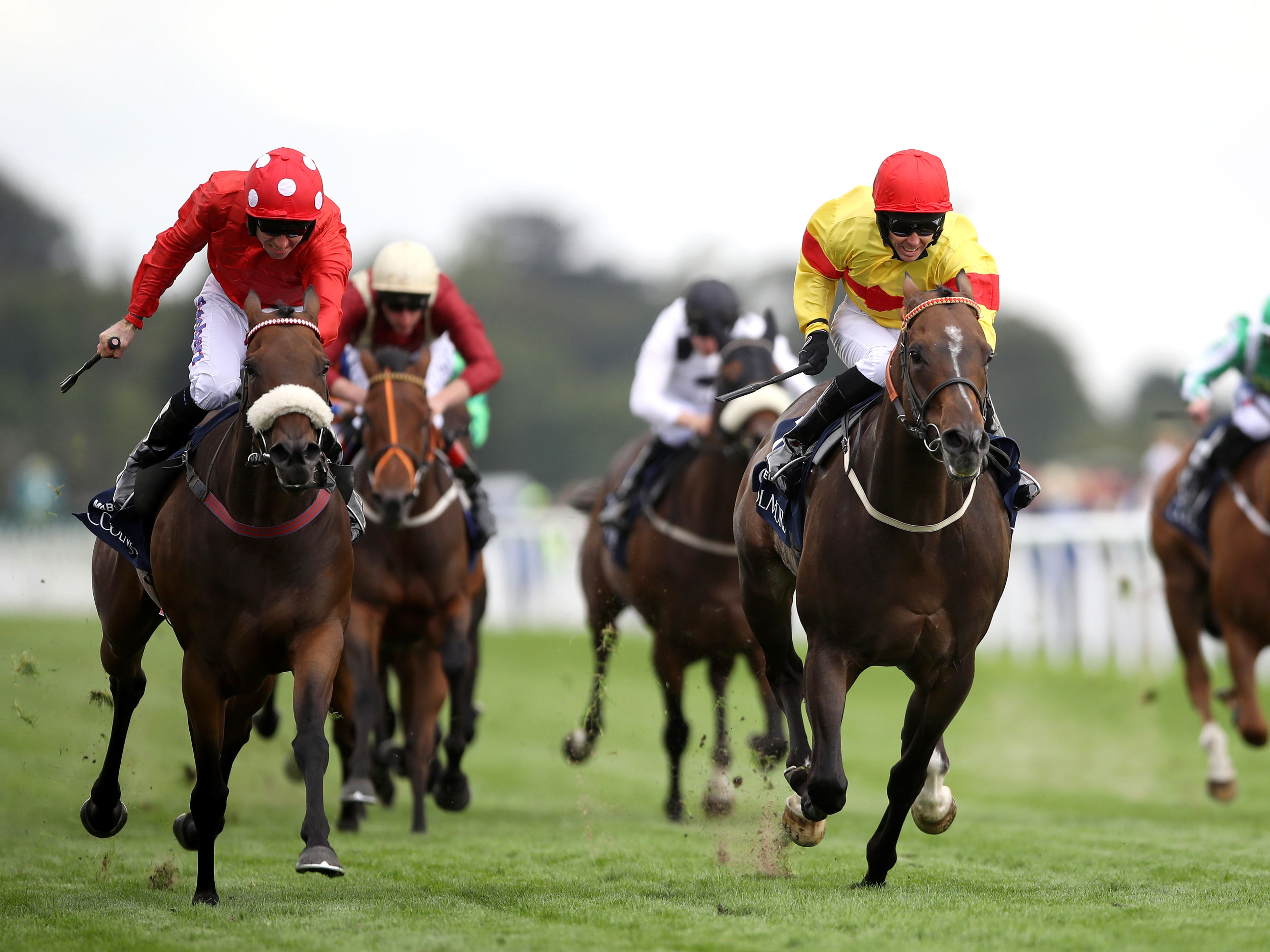 Alpha Delphini (right) just touched off Mabs Cross in the Nunthorpe (Tim Goode/PA)