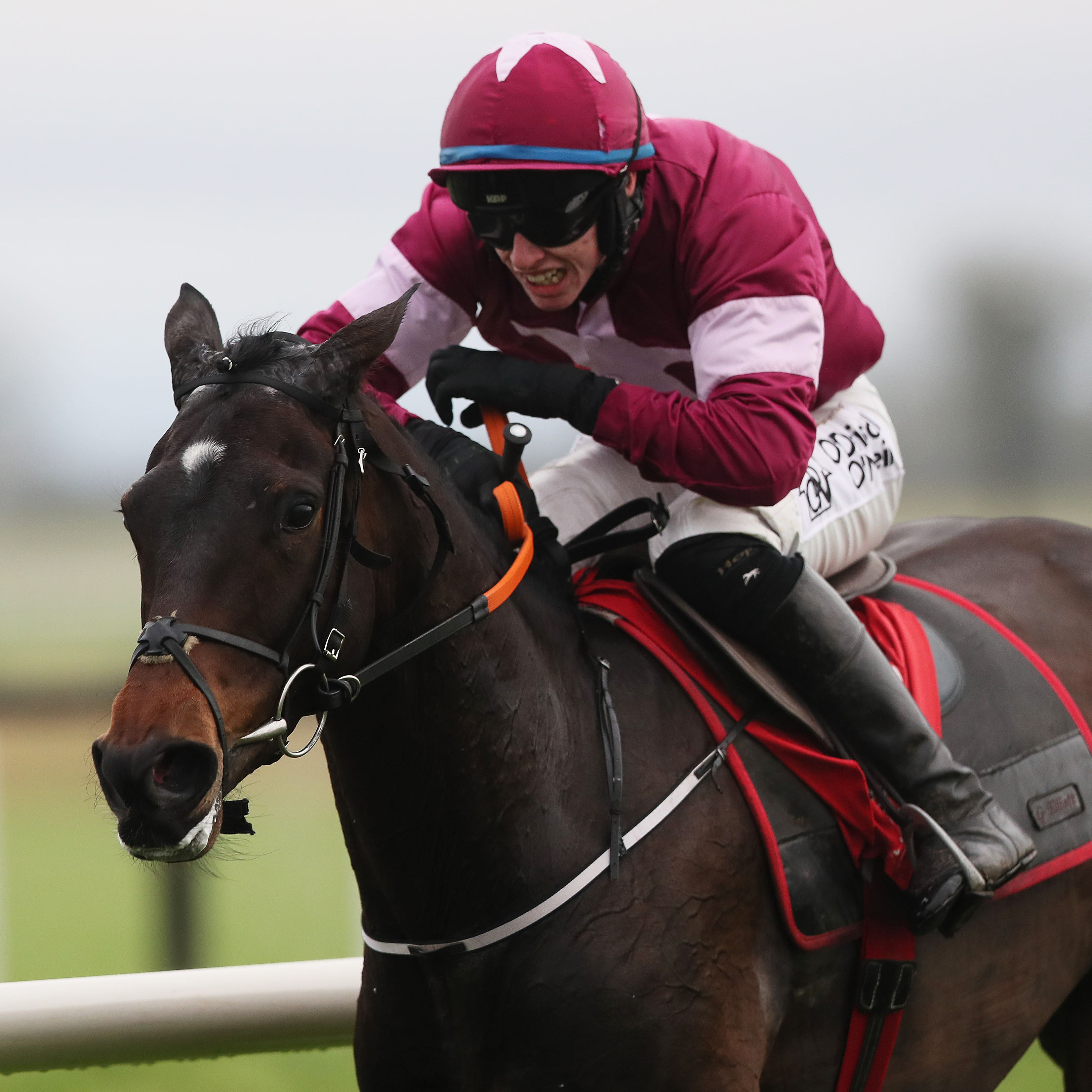 Apple's Jade on her way to winning her second Hatton's Grace Hurdle at Fairyhouse