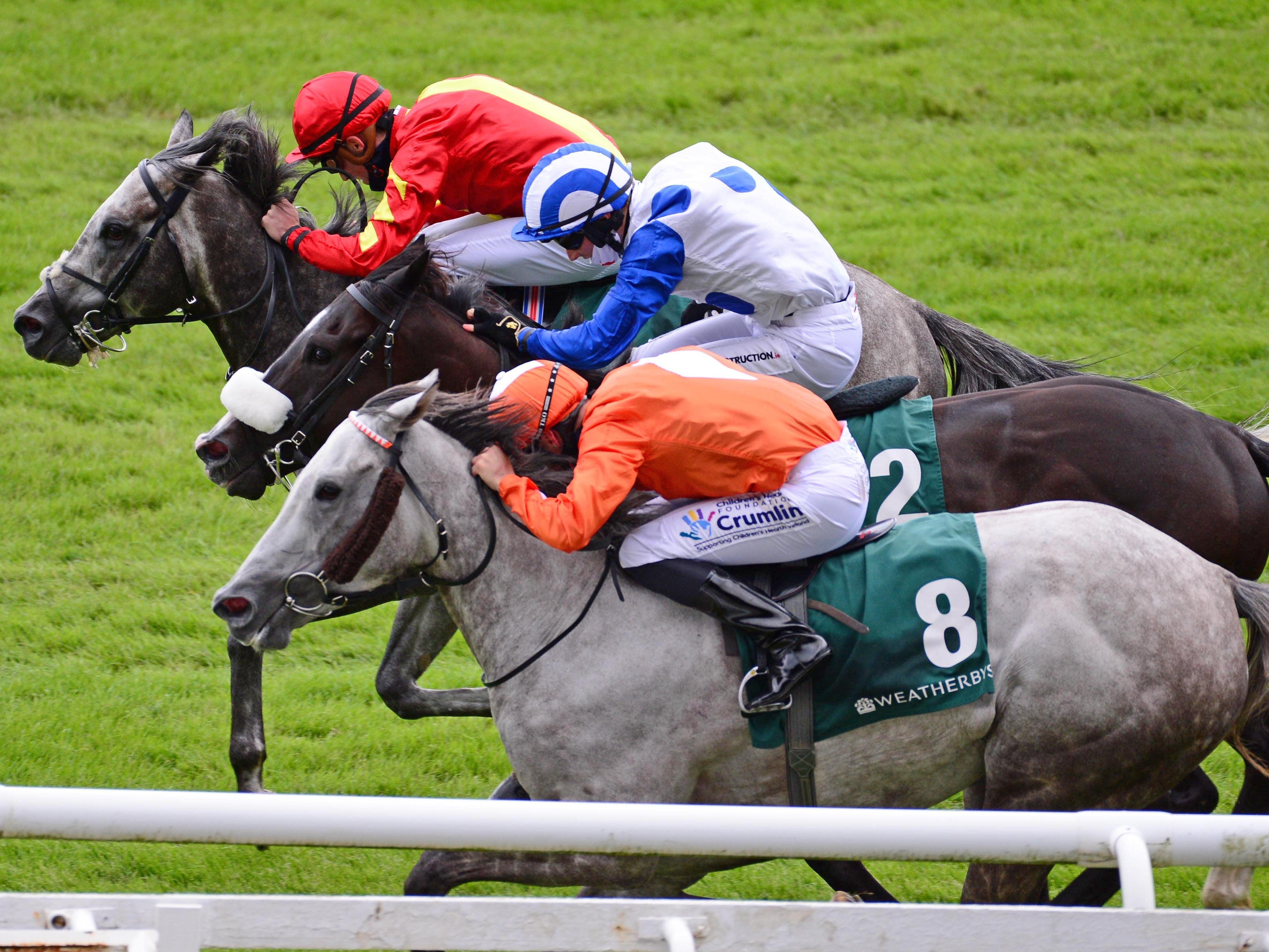 Speak in Colours (top) came out best in a thrilling Greenlands Stakes (PA)