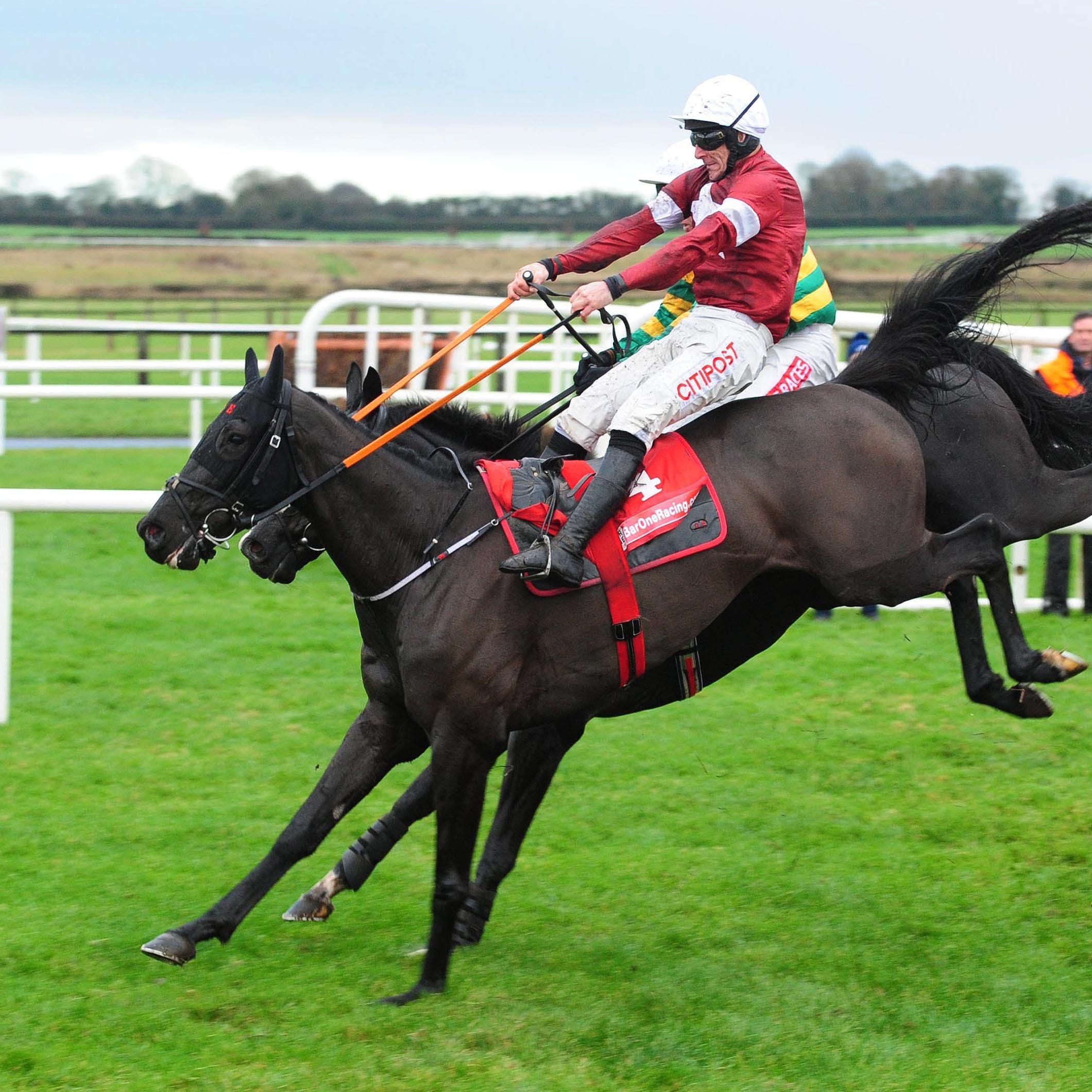 Delta Work and Le Richebourg battle it out at Fairyhouse