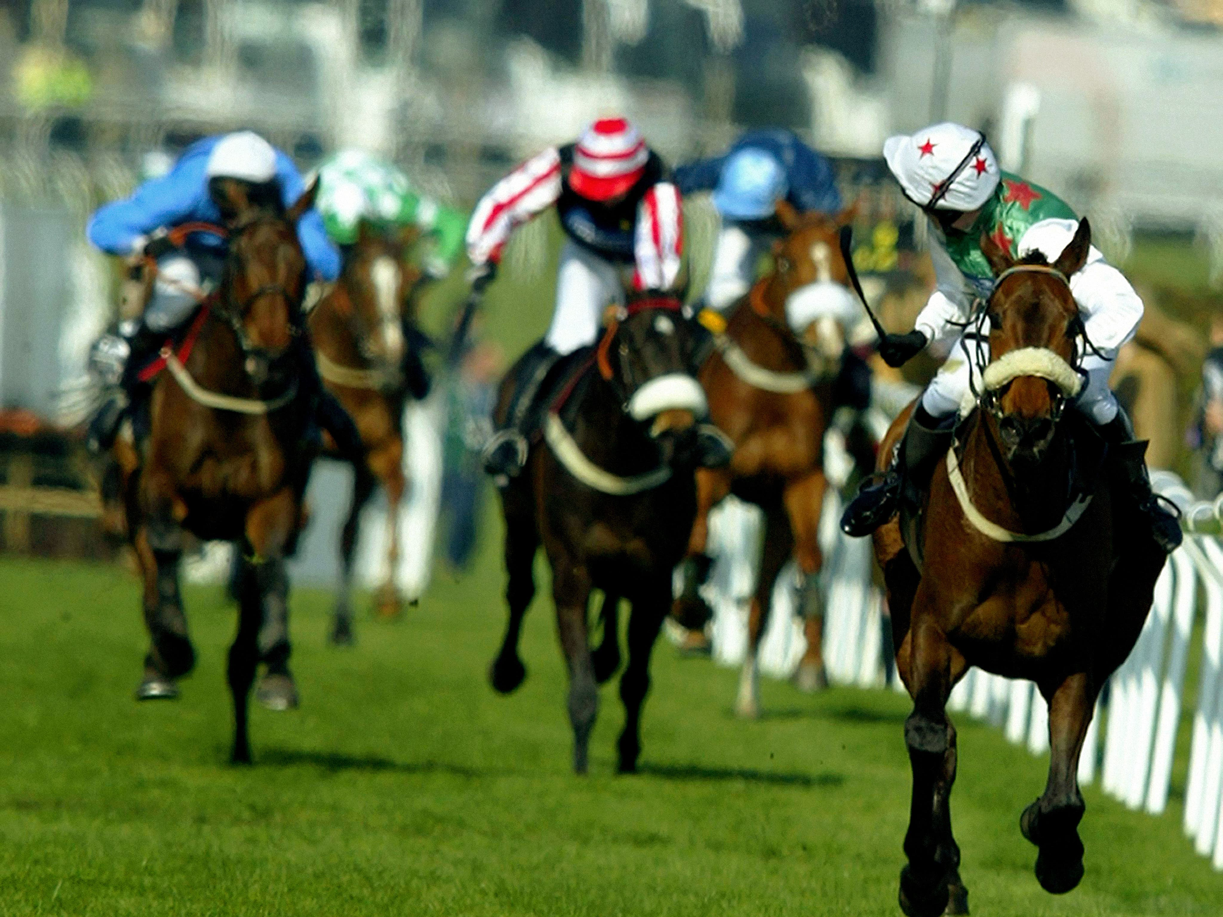 Barry Geraghty sees no dangers as Monty's Pass (far right) gallops home in the 2003 Martell Grand National (Phil Noble/PA)