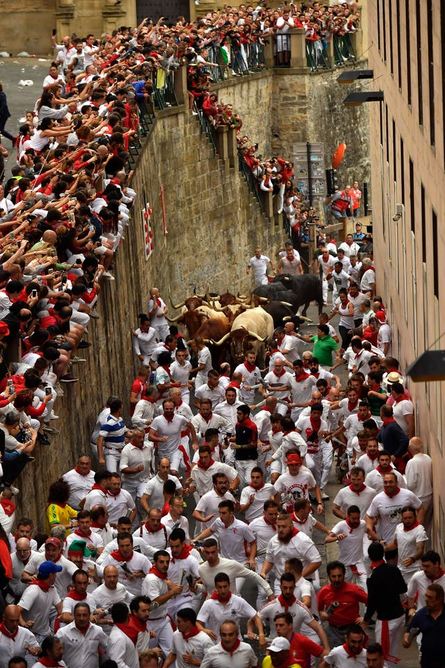Revellers run next to the bulls during the festival