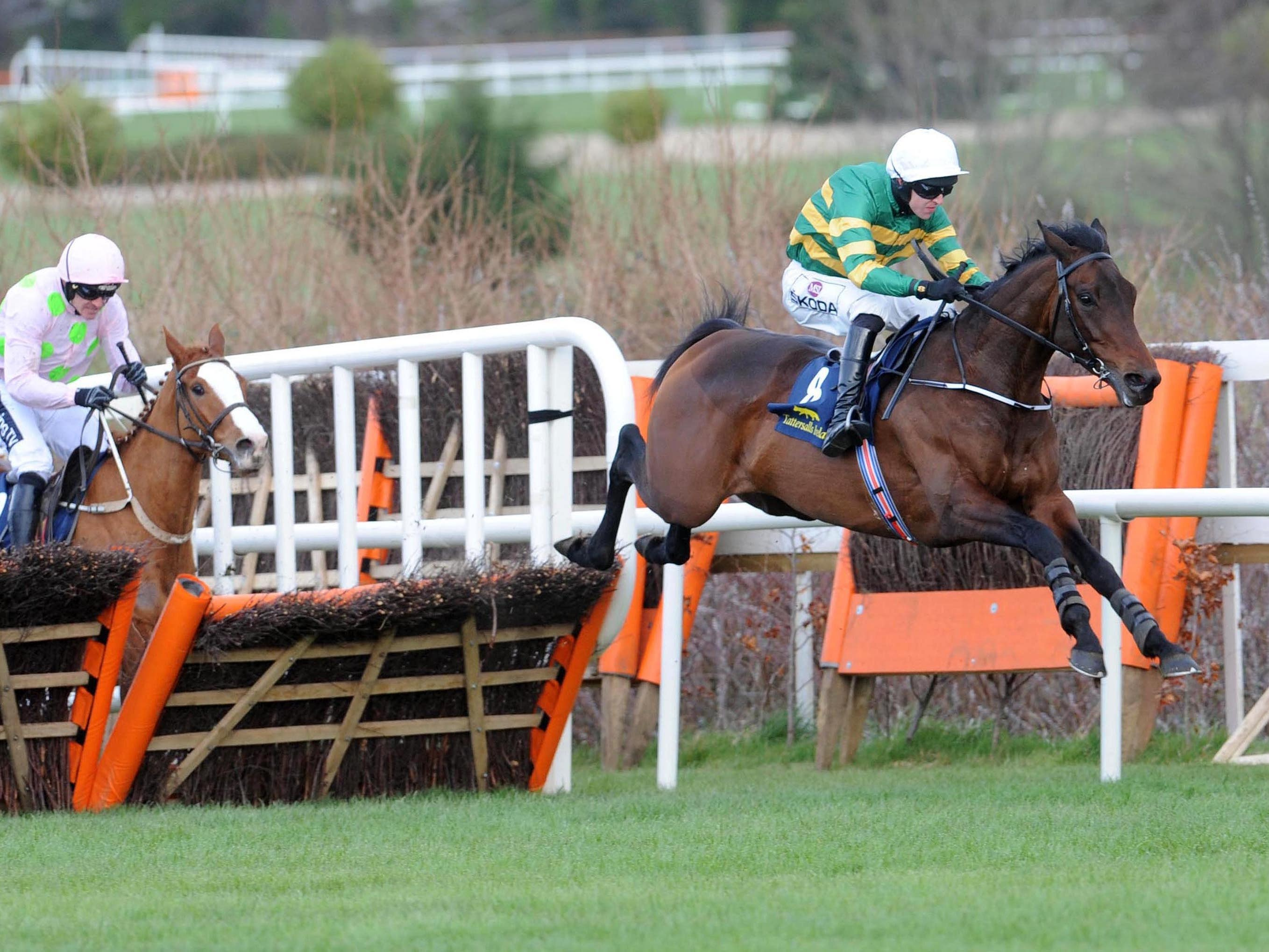 Image result for sir erec triumph hurdle