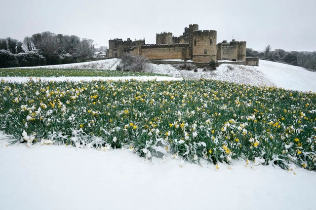 Heavy snow in Northumberland