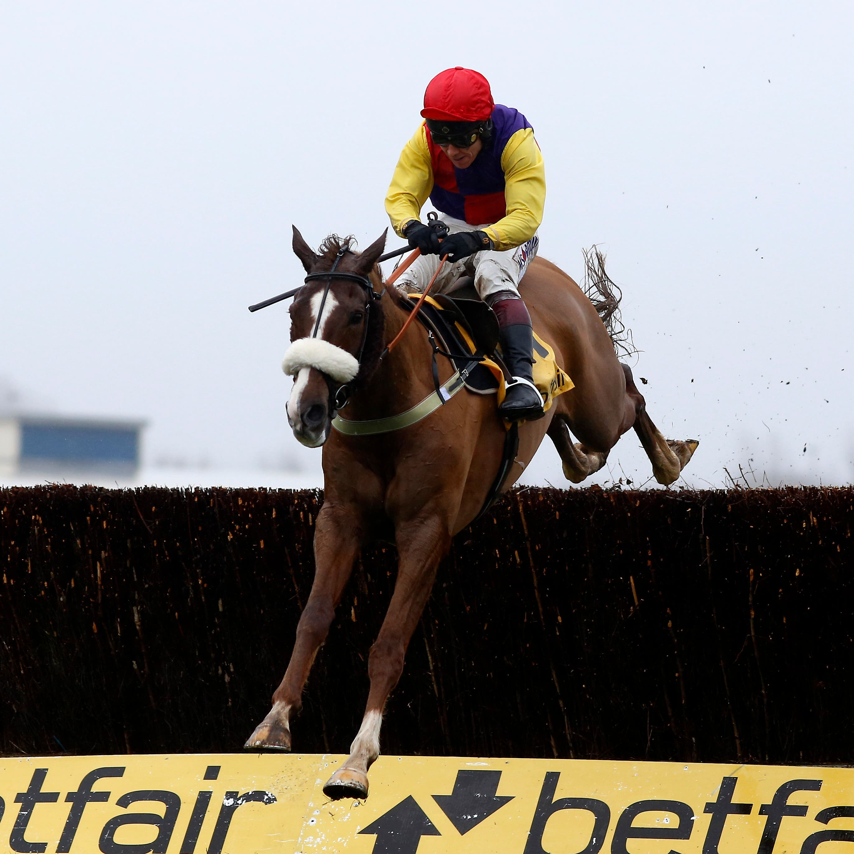 Native River is looking for a hat-trick in the Denman Chase
