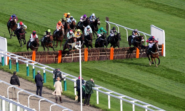 Captain Tom Cat leads over the final flight at Cheltenham