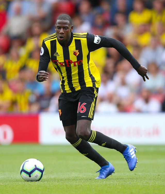 Abdoulaye Doucoure has formed a strong partnership with Etienne Capoue in the Watford midfield