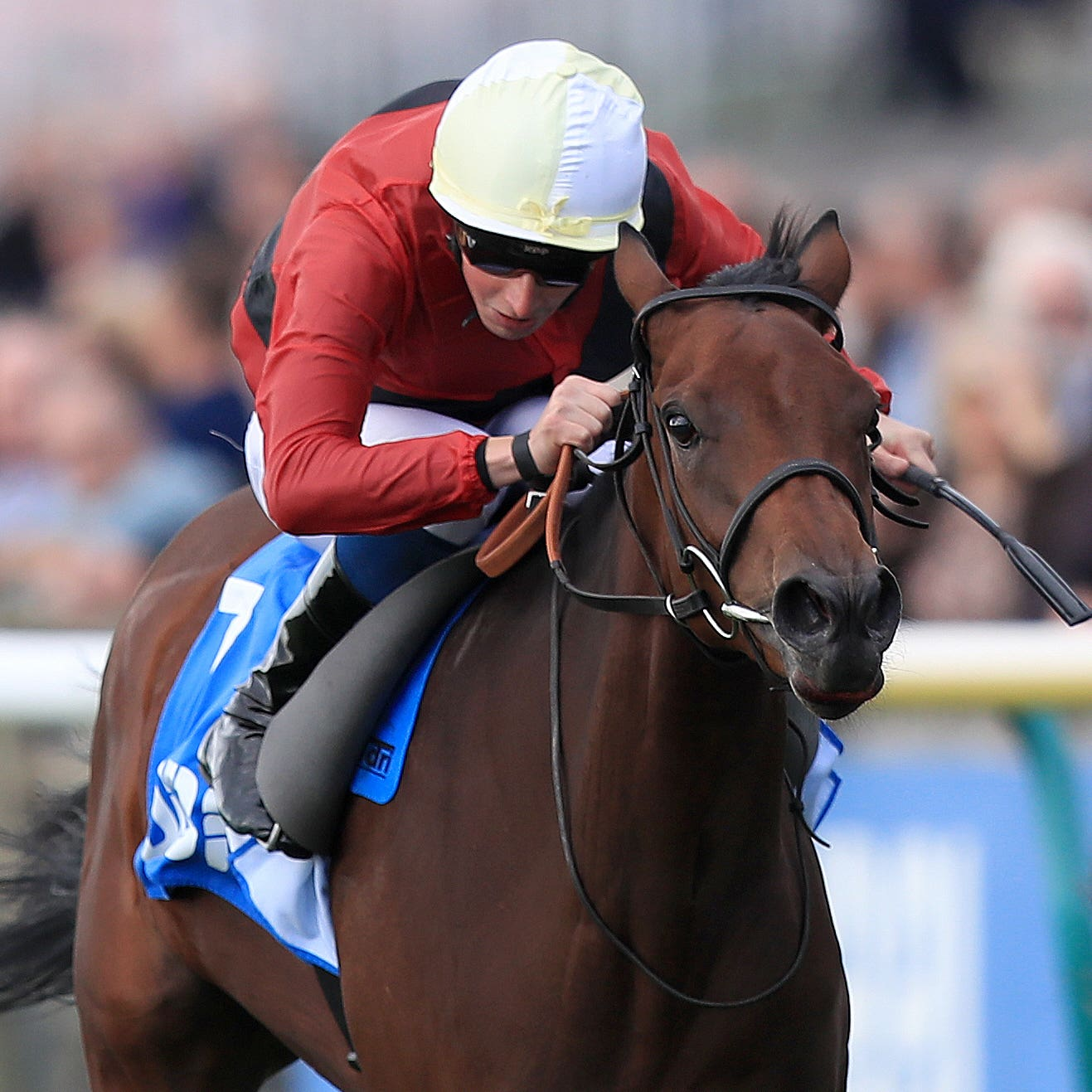 Mot Juste runs in the Nell Gwyn Stakes at Newmarket