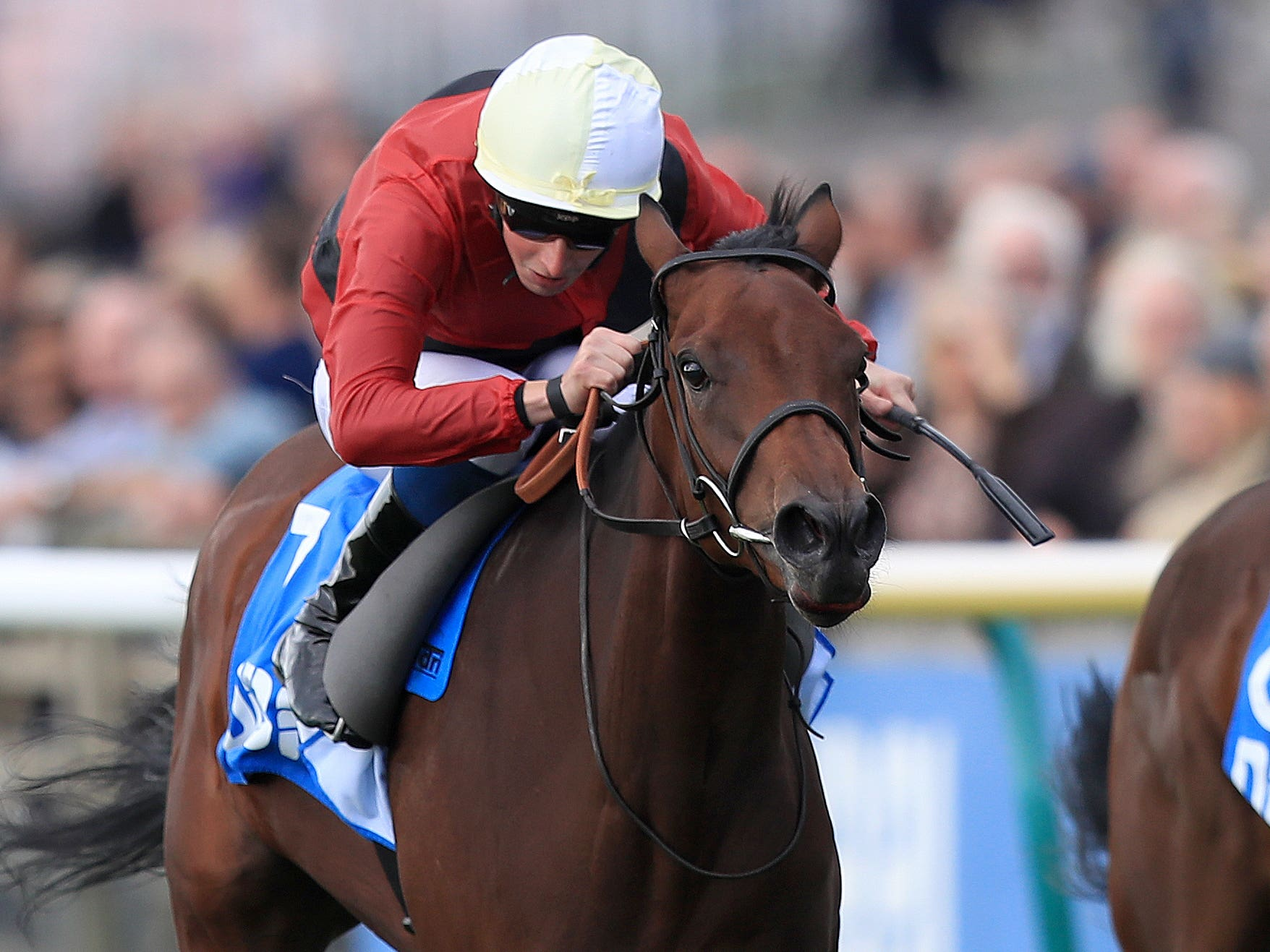 Mot Juste runs in the Nell Gwyn Stakes at Newmarket (Simon Cooper/PA)