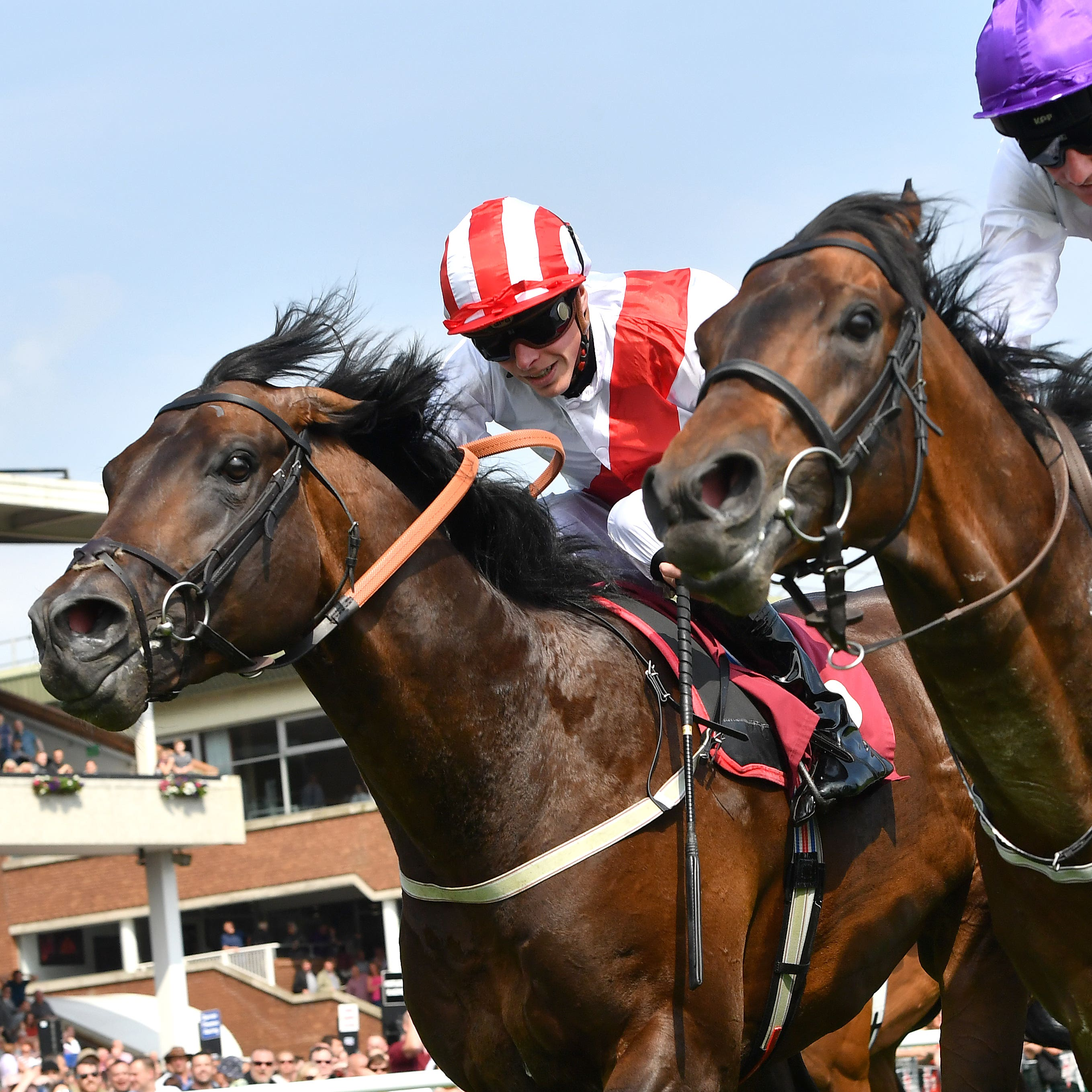 Sands Of Mali (right) holds off Invincible Army at Haydock