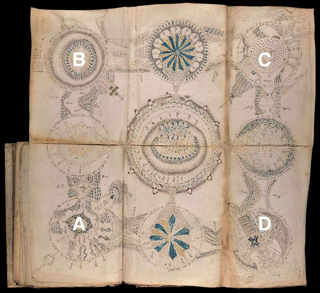 An unfolded map from the Voynich manuscript