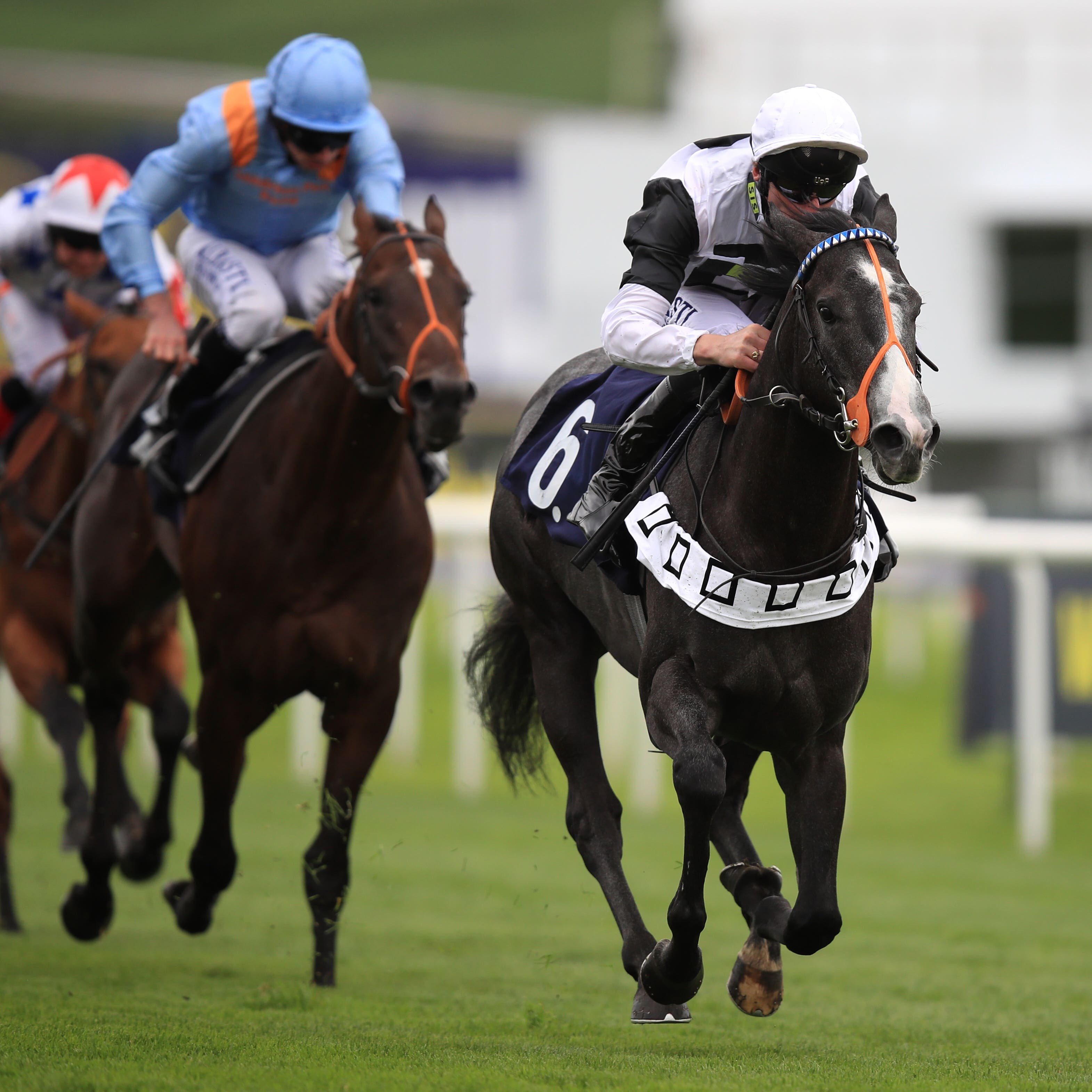 2000 Guineas runner-up Tip Two Win who will be aimed at next year's Lockinge after having time called on his current campaign