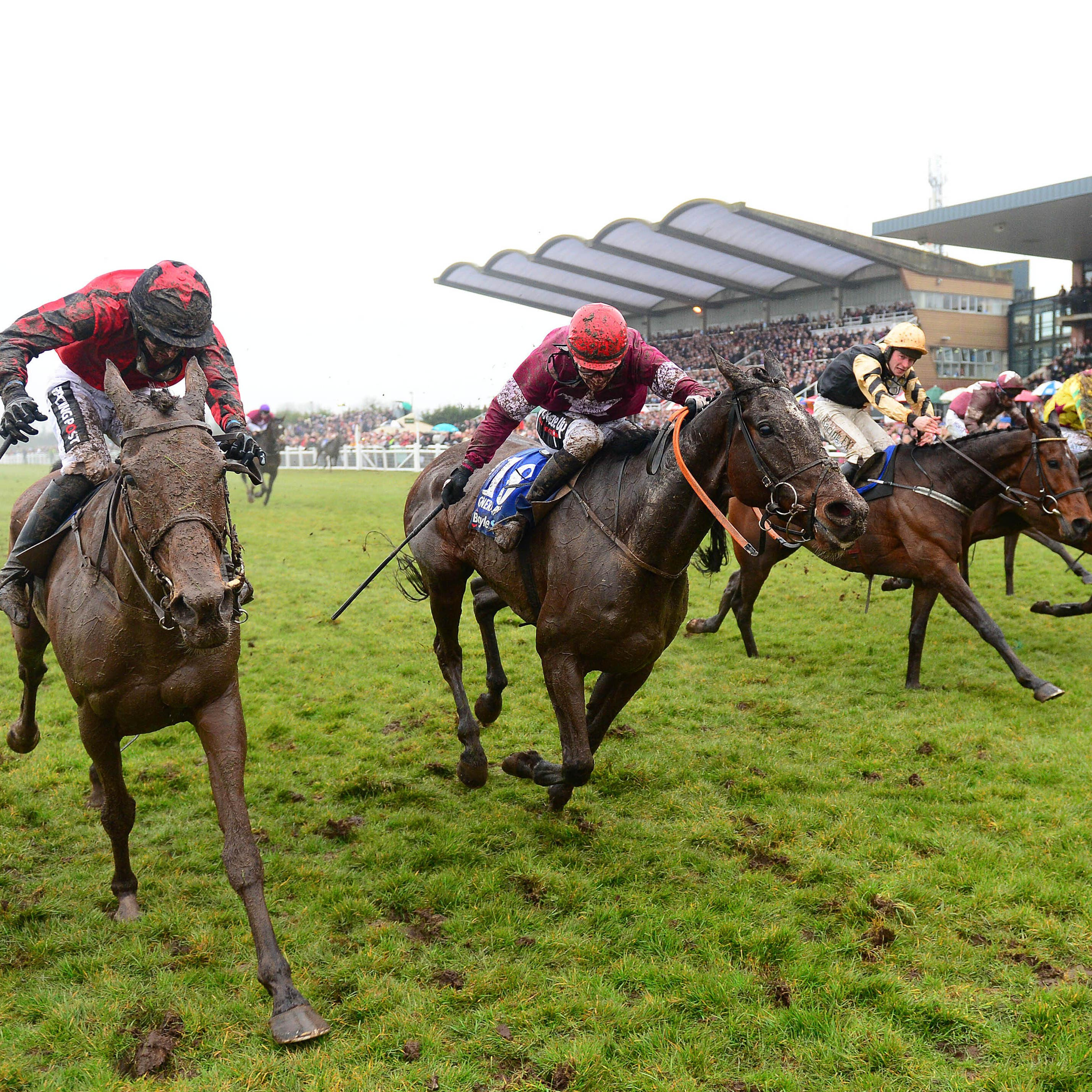 General Principle (second left) came out on top in a blanket finish last year