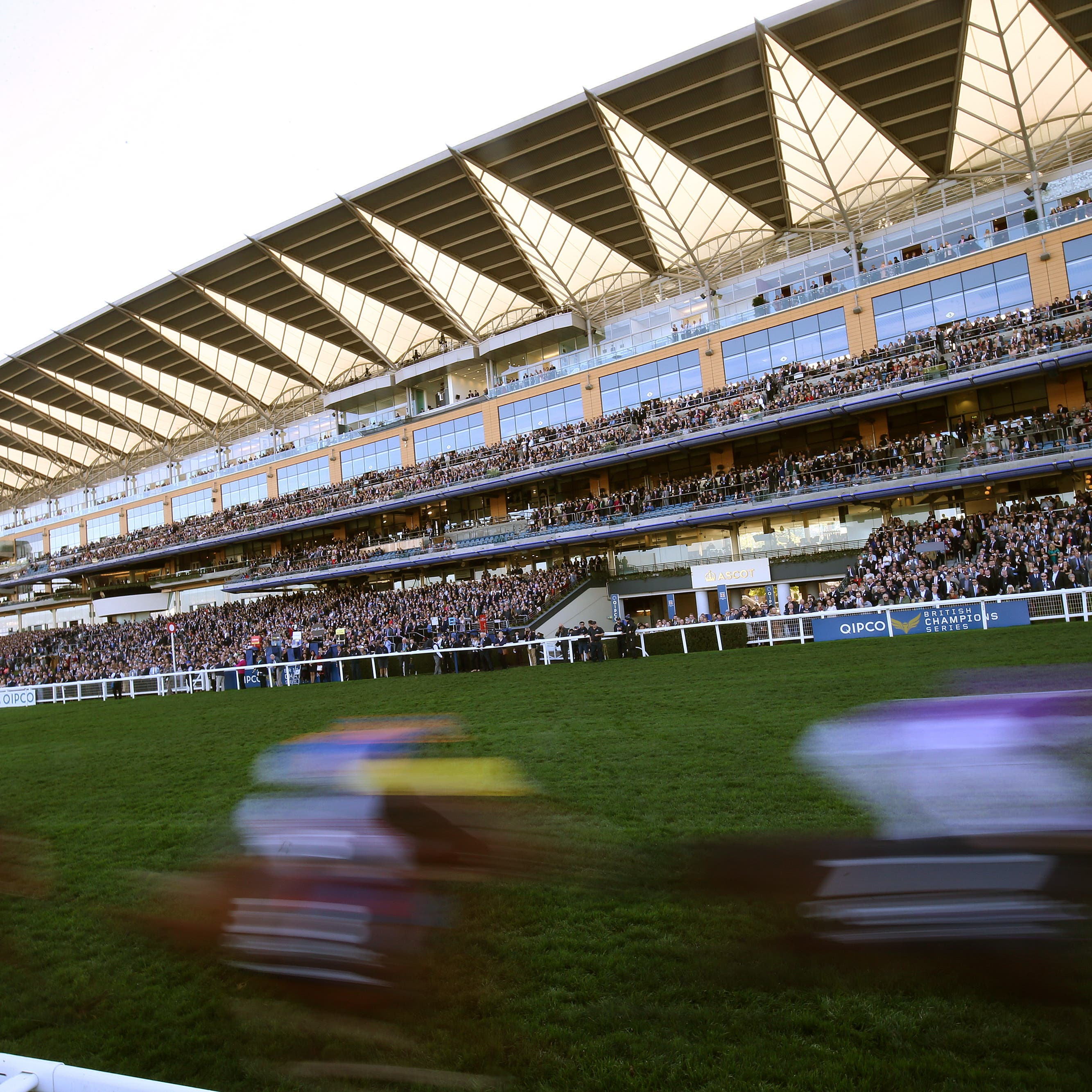 Michael O'Callaghan has mapped out his Royal Ascot team