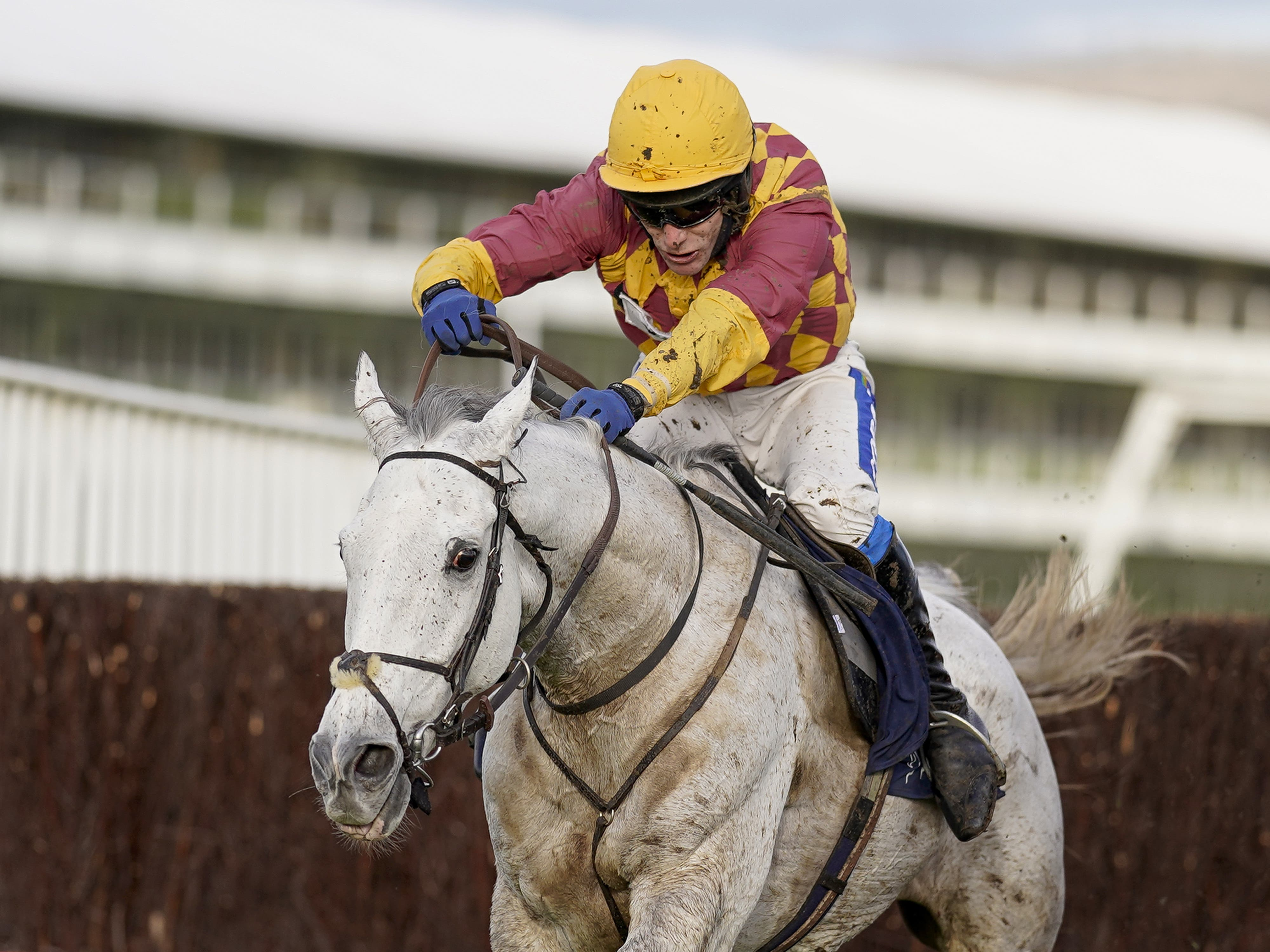 Ramses de Teillee on his way to wining at Cheltenham (Alan Crowhurst/PA)
