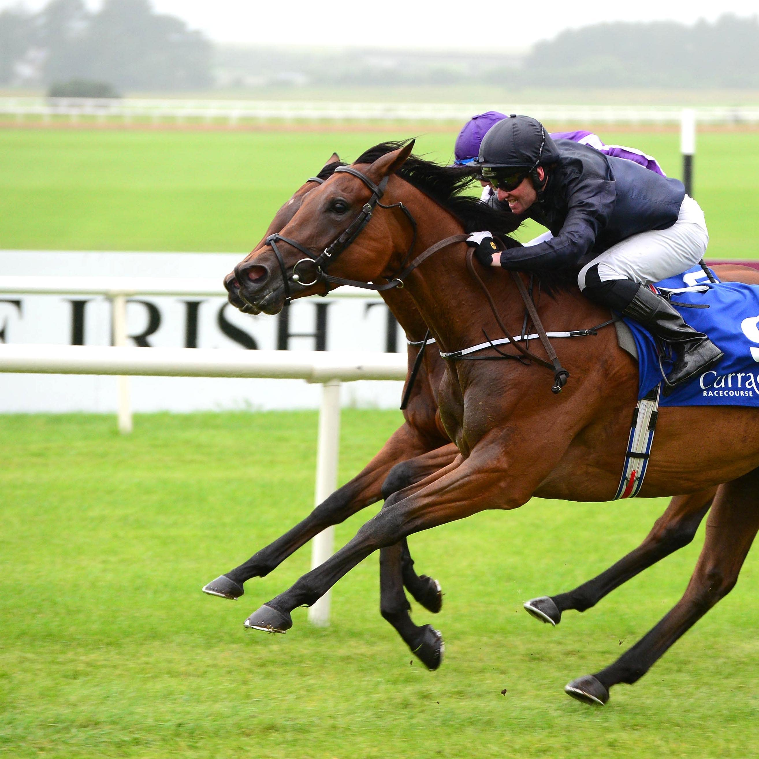 Rhododendron winning the Debutante Stakes at the Curragh (PA)