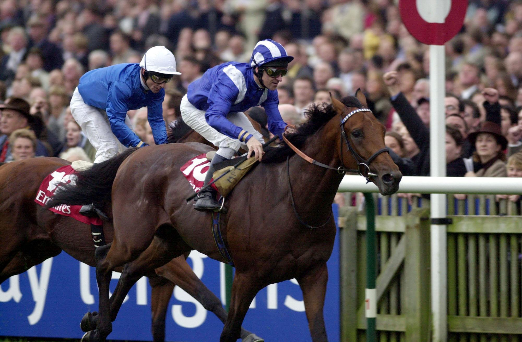 Nayef was a superstar racehorse for Marcus Tregoning