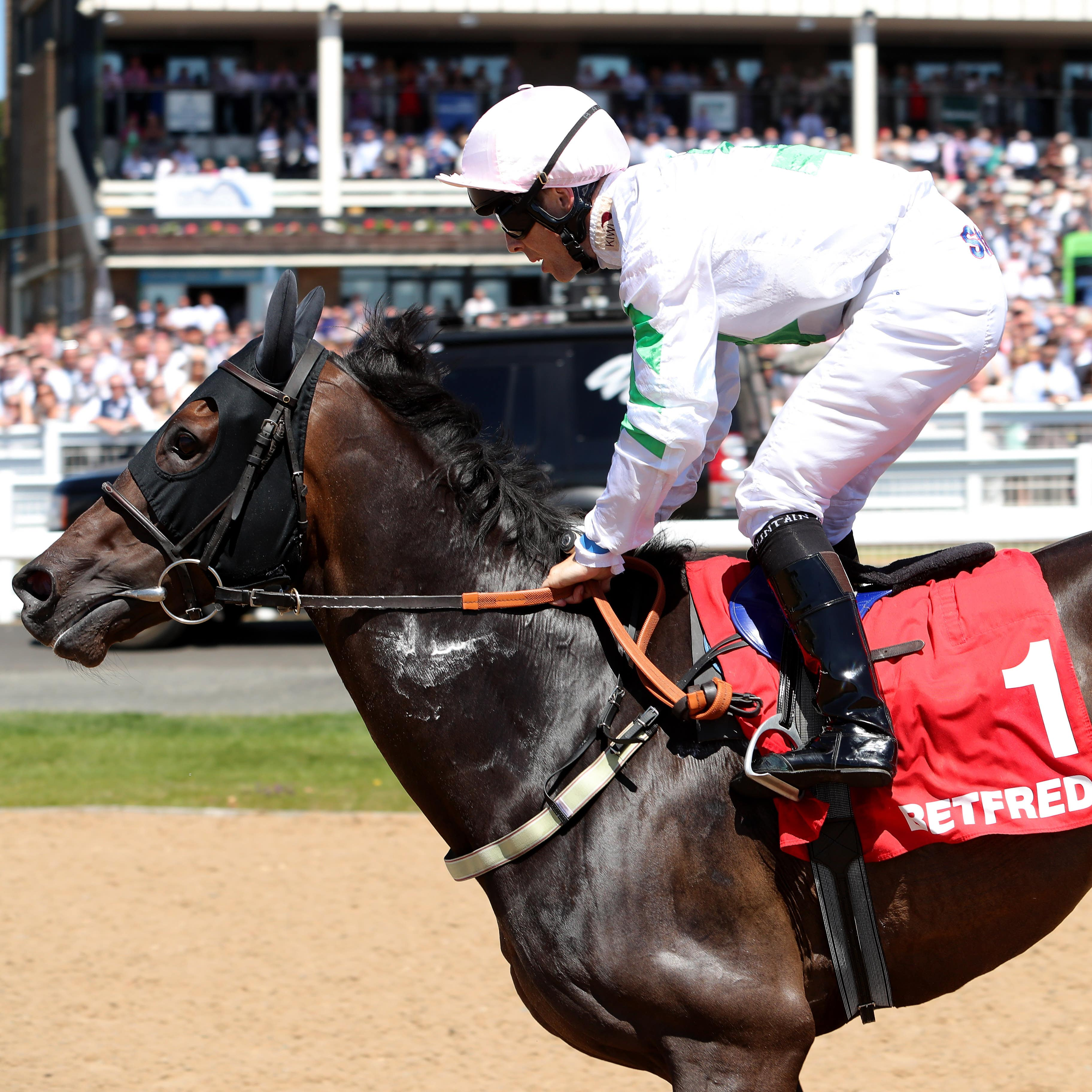 Above The Rest returned to winning ways in the Wulfruna Stakes at Wolverhampton