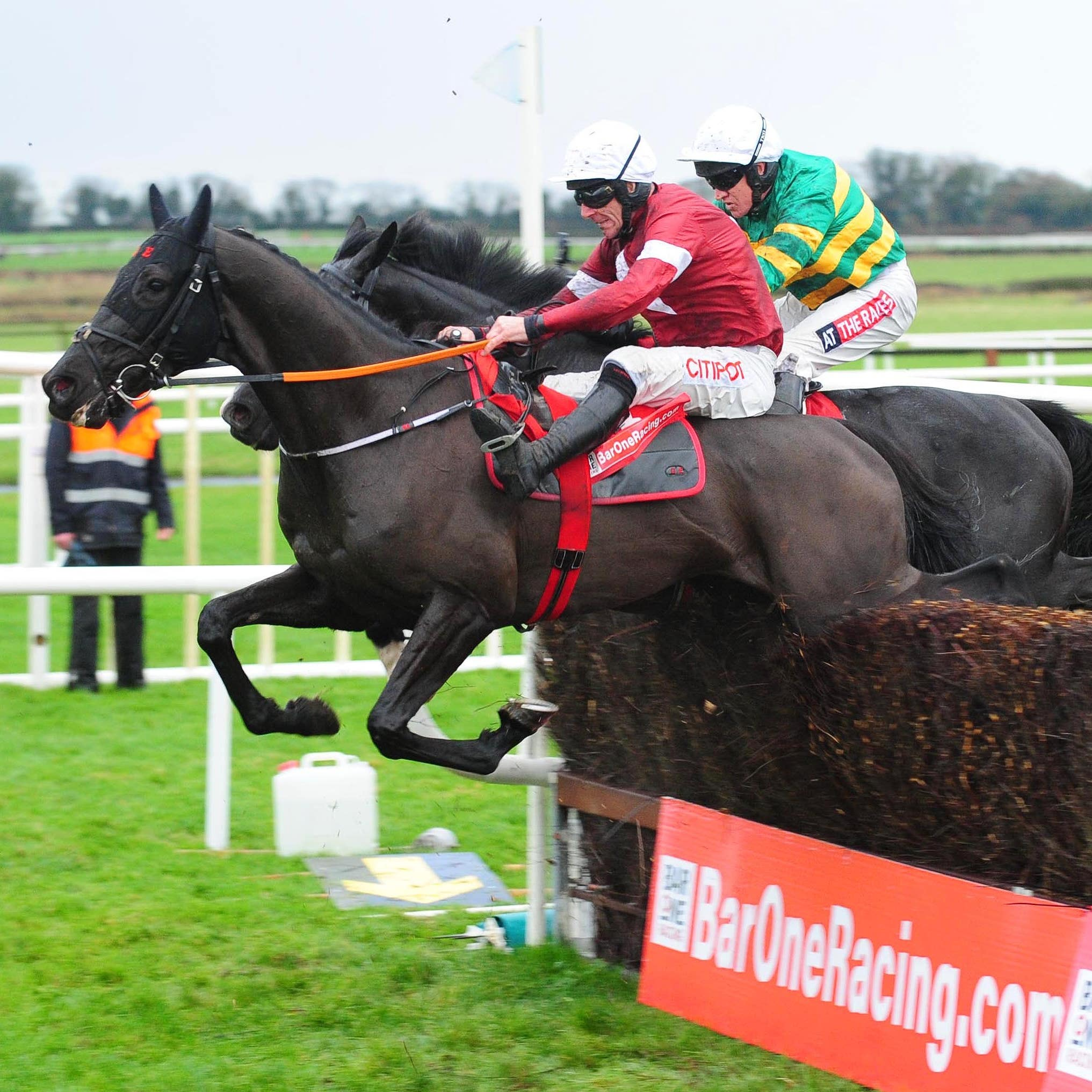 Delta Work (nearside) on his way to winning the Drinmore Novice Chase at Fairyhouse