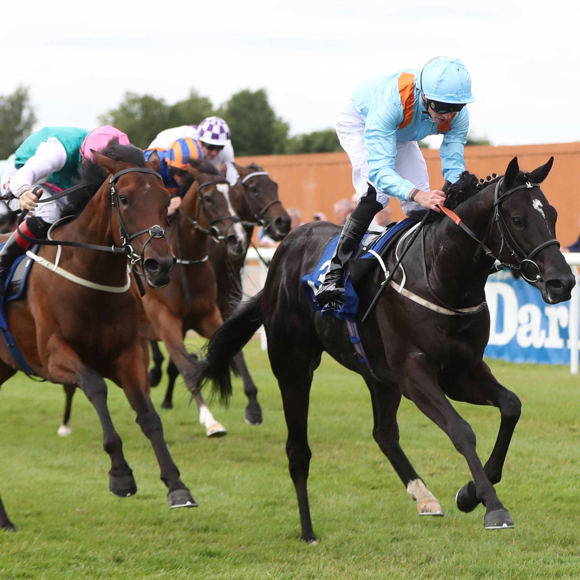 Marie's Diamond (right) wins the Anglesey Stakes under James Doyle