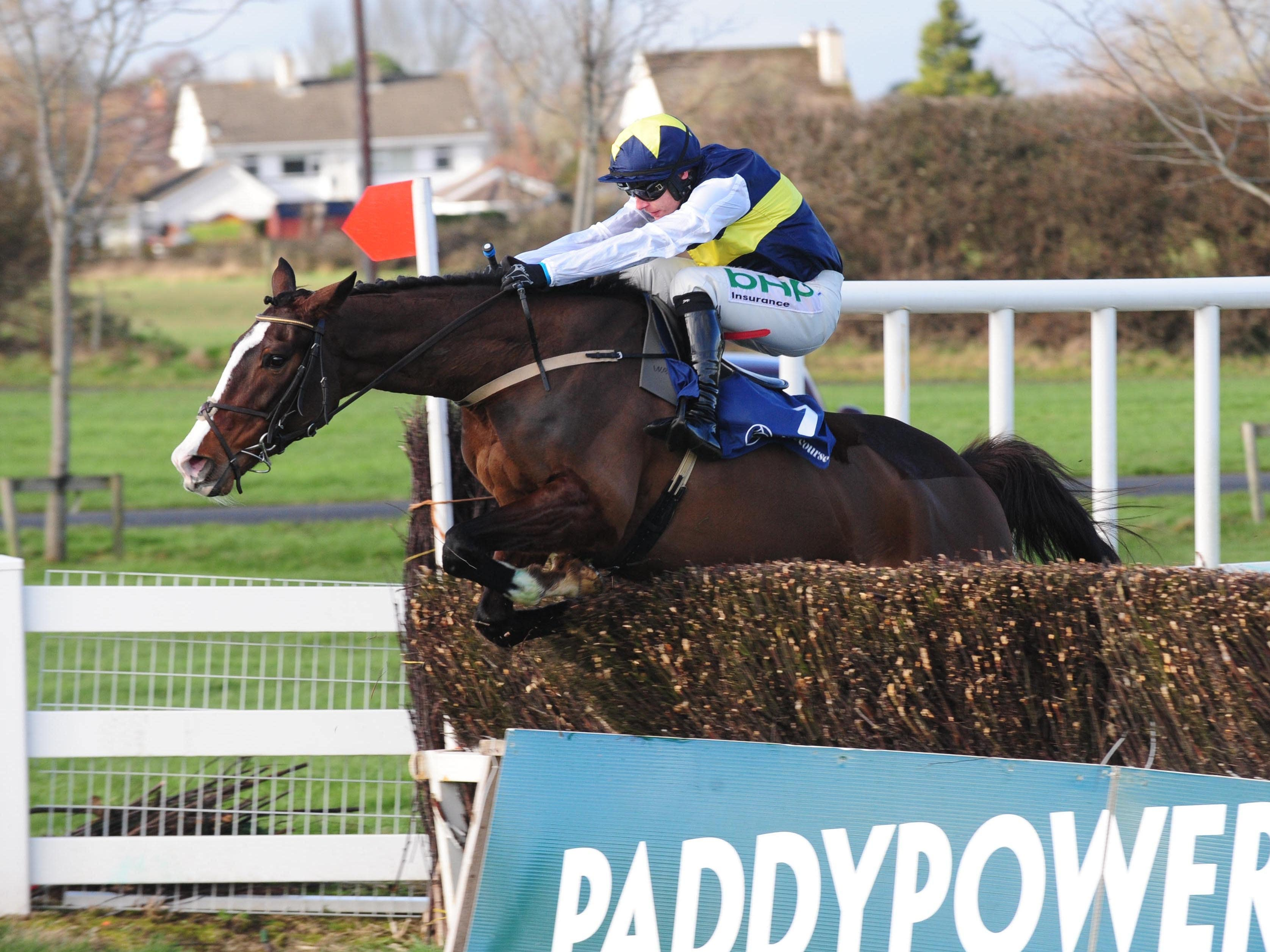 Pravalaguna and Paul Townend jump the last fence to win the BBA Ireland Opera Hat Mares Chase at Naas (PA)