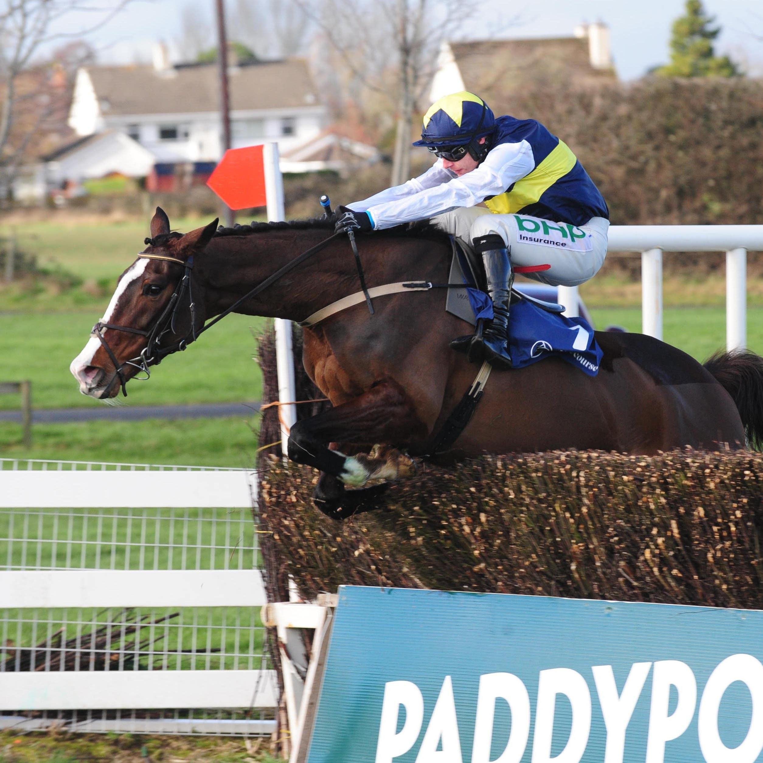 Pravalaguna and Paul Townend jump the last fence to win the BBA Ireland Opera Hat Mares Chase at Naas