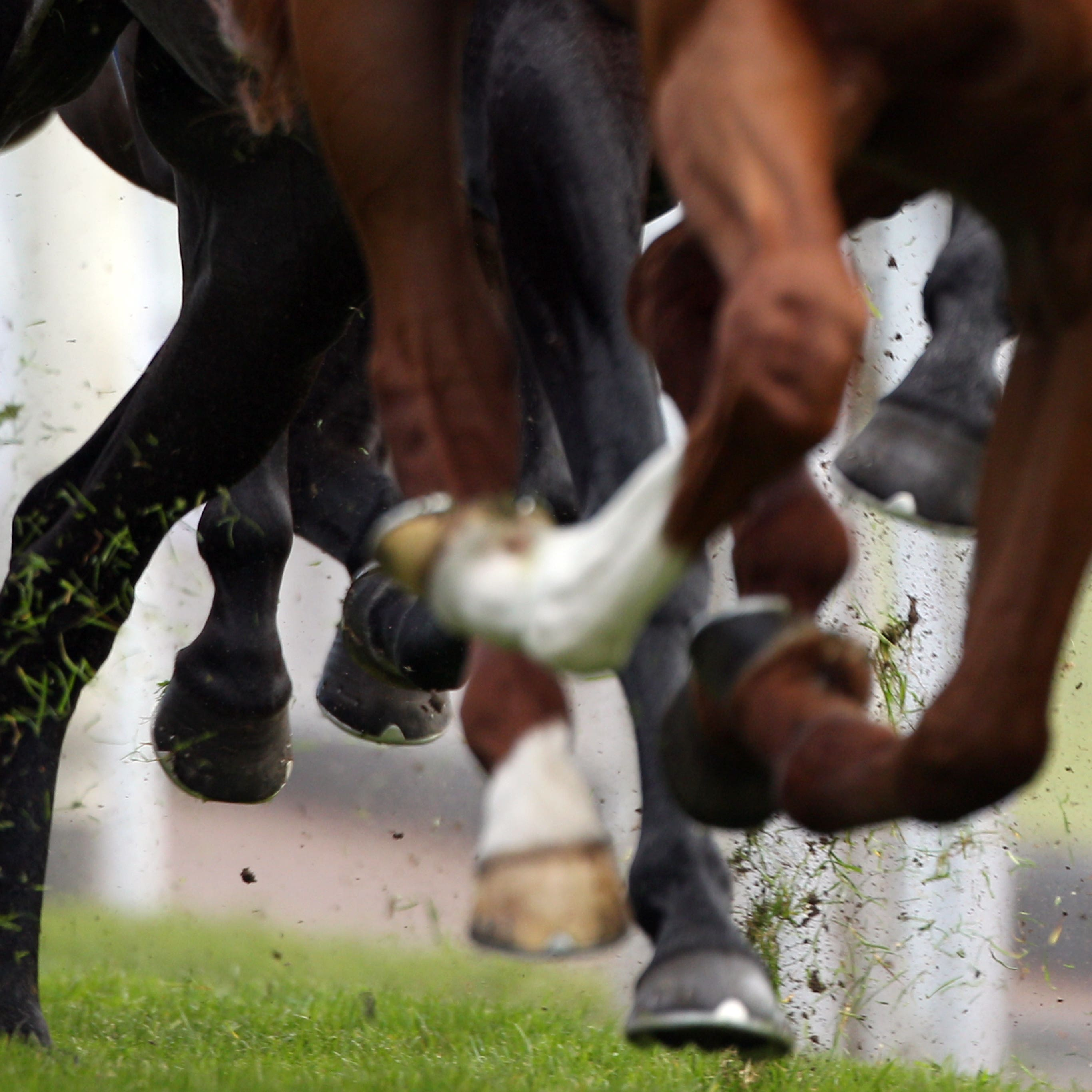 Monday's meeting at Tramore has been abandoned