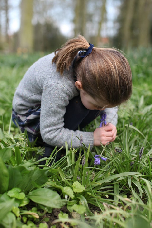 Charlotte with bluebells