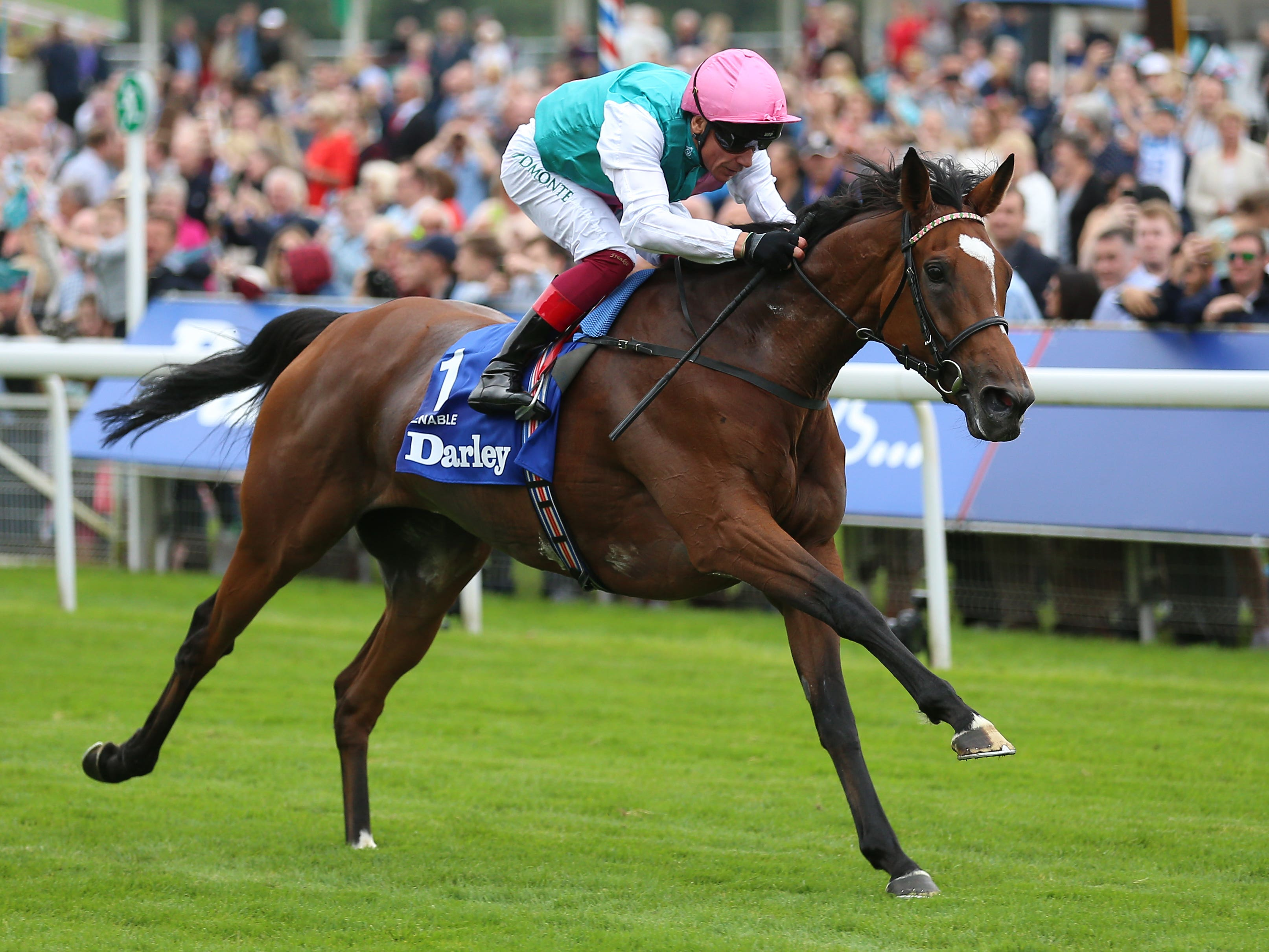 Enable is reported to be in rude health (Nigel French/PA)