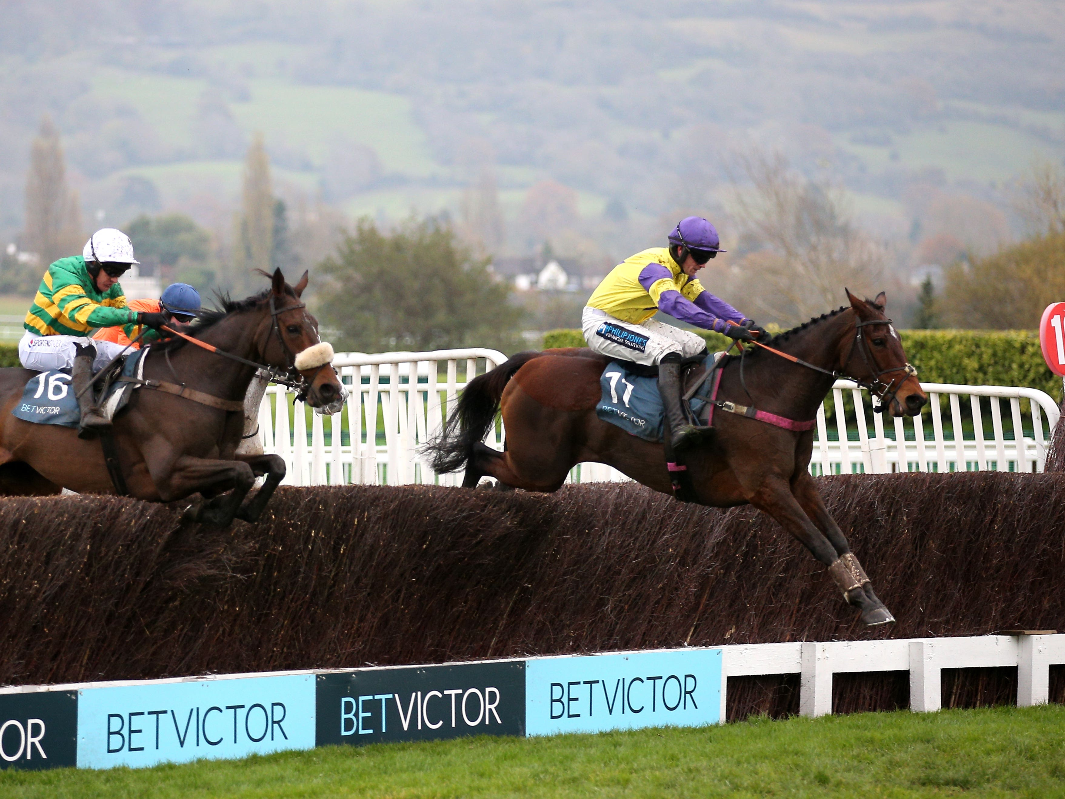 Happy Diva makes her seasonal debut at Wetherby before heading back to Cheltenham next month (Nigel French/PA)